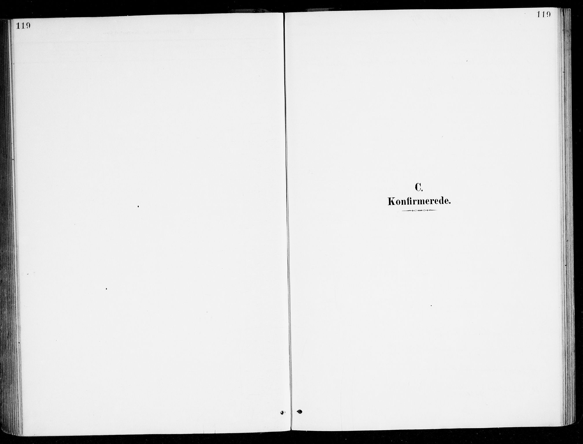 SAB, Haus sokneprestembete, H/Haa: Ministerialbok nr. D 1, 1887-1898, s. 119
