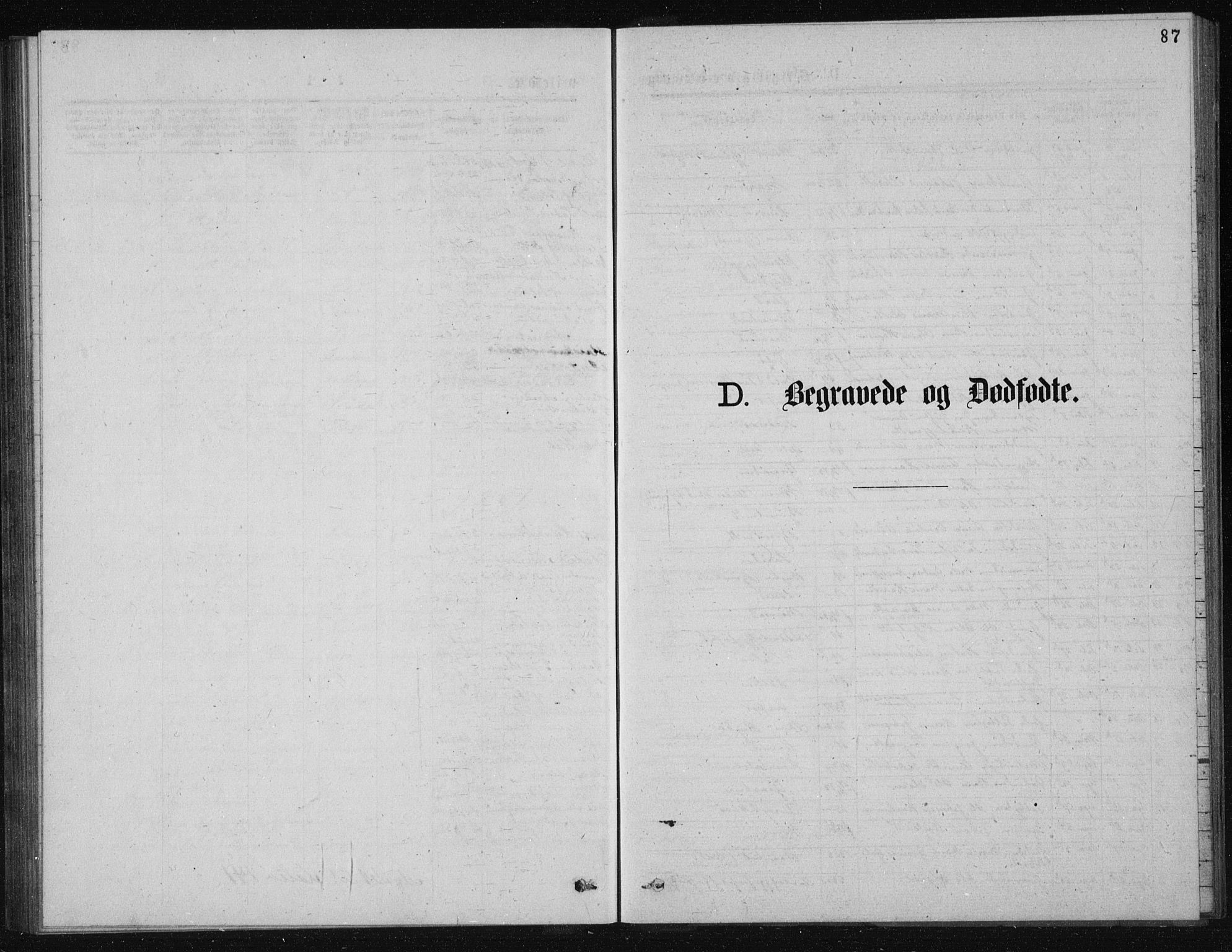 SAKO, Solum kirkebøker, G/Ga/L0005: Klokkerbok nr. I 5, 1877-1881, s. 87