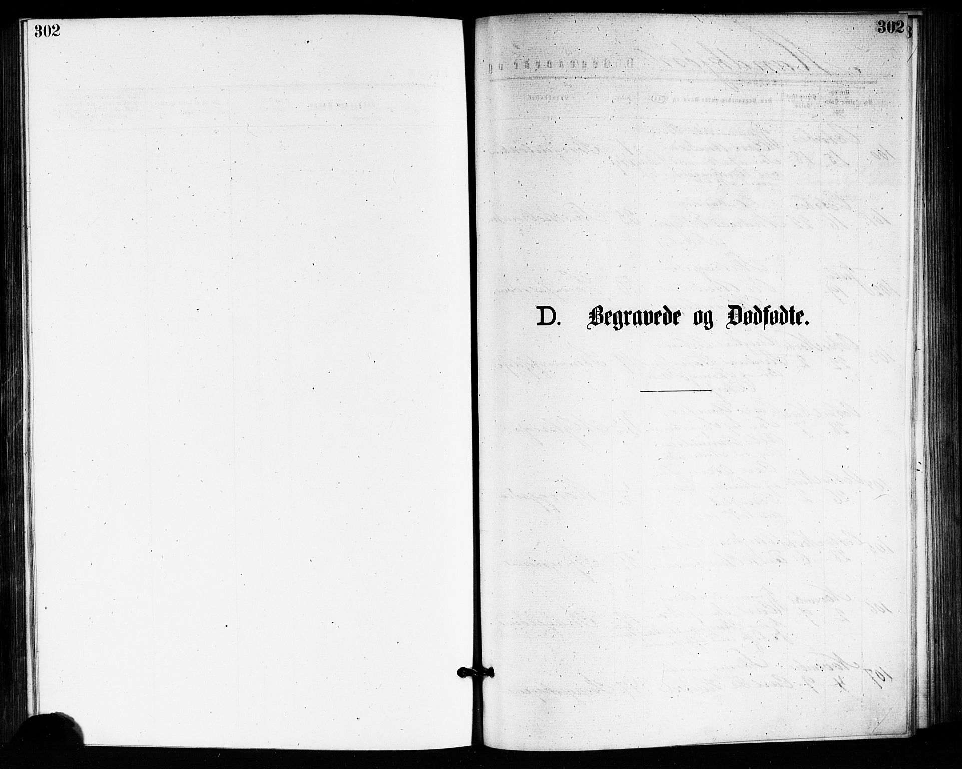 SAKO, Bragernes kirkebøker, F/Fb/L0005: Ministerialbok nr. II 5, 1875-1877, s. 302