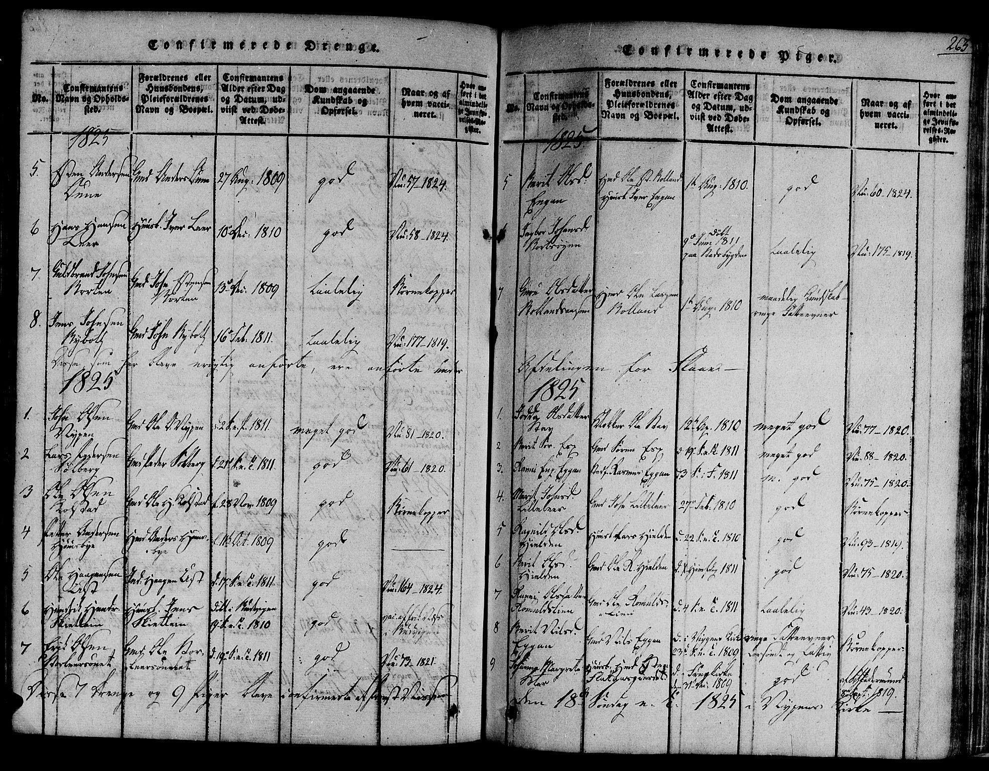SAT, Ministerialprotokoller, klokkerbøker og fødselsregistre - Sør-Trøndelag, 691/L1067: Ministerialbok nr. 691A03 /3, 1816-1826, s. 263
