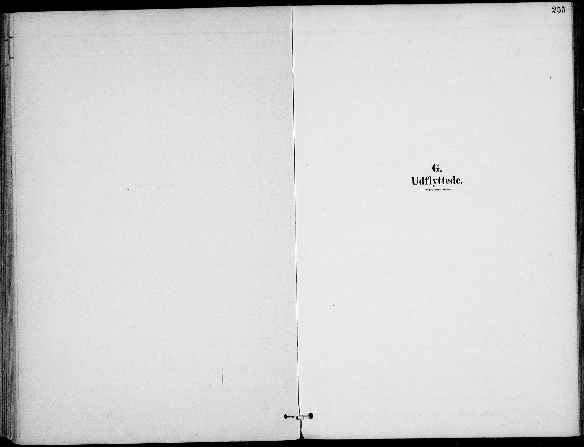 SAKO, Sigdal kirkebøker, F/Fb/L0001: Ministerialbok nr. II 1, 1888-1900, s. 255