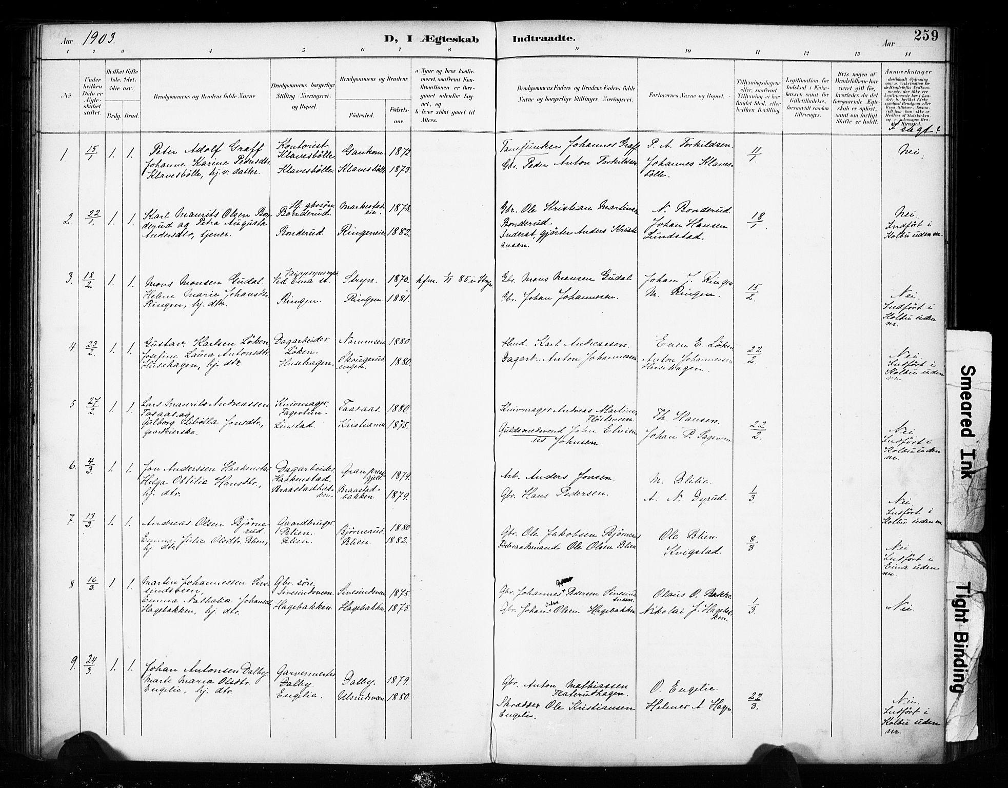 SAH, Vestre Toten prestekontor, Ministerialbok nr. 11, 1895-1906, s. 259
