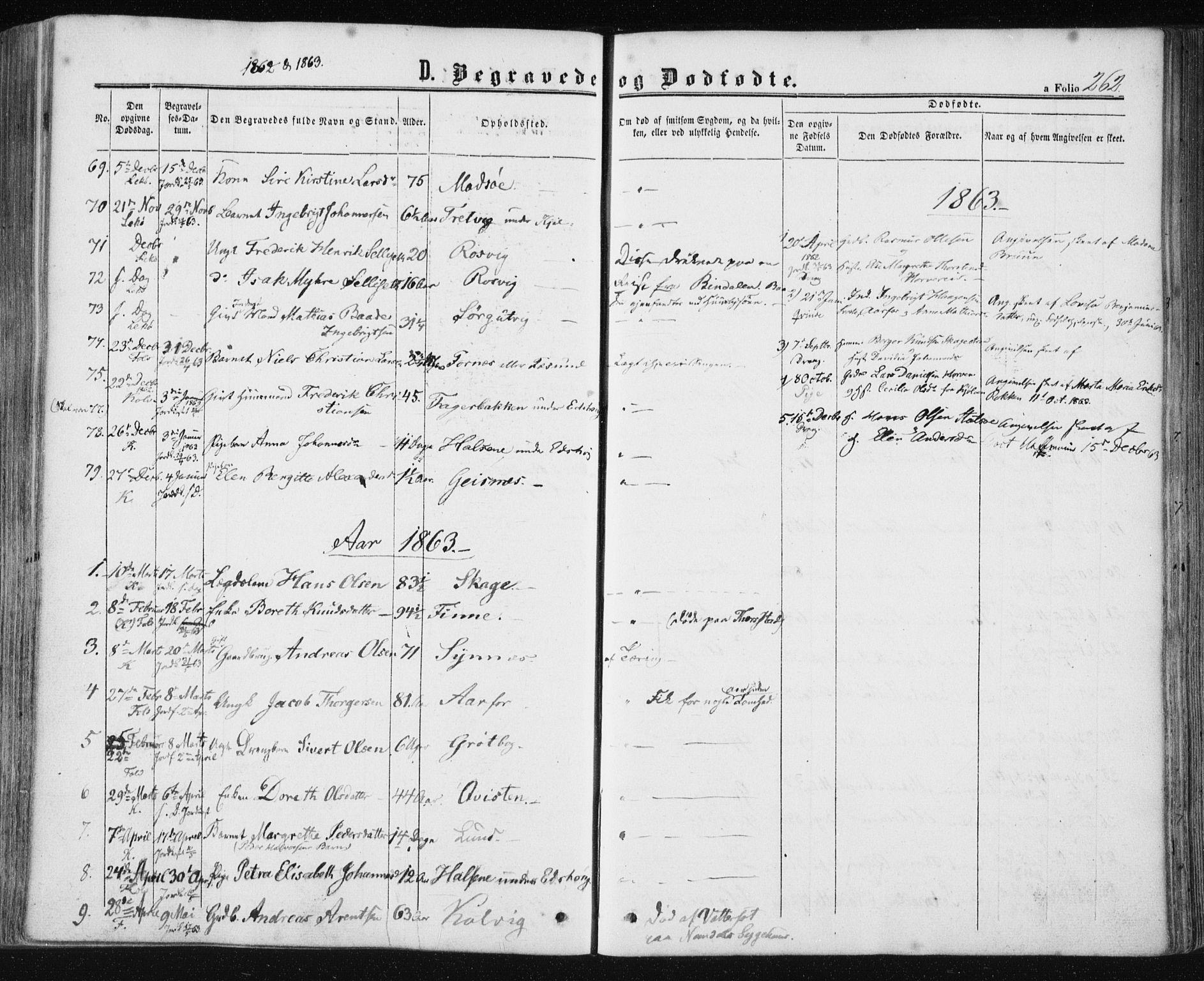 SAT, Ministerialprotokoller, klokkerbøker og fødselsregistre - Nord-Trøndelag, 780/L0641: Ministerialbok nr. 780A06, 1857-1874, s. 262