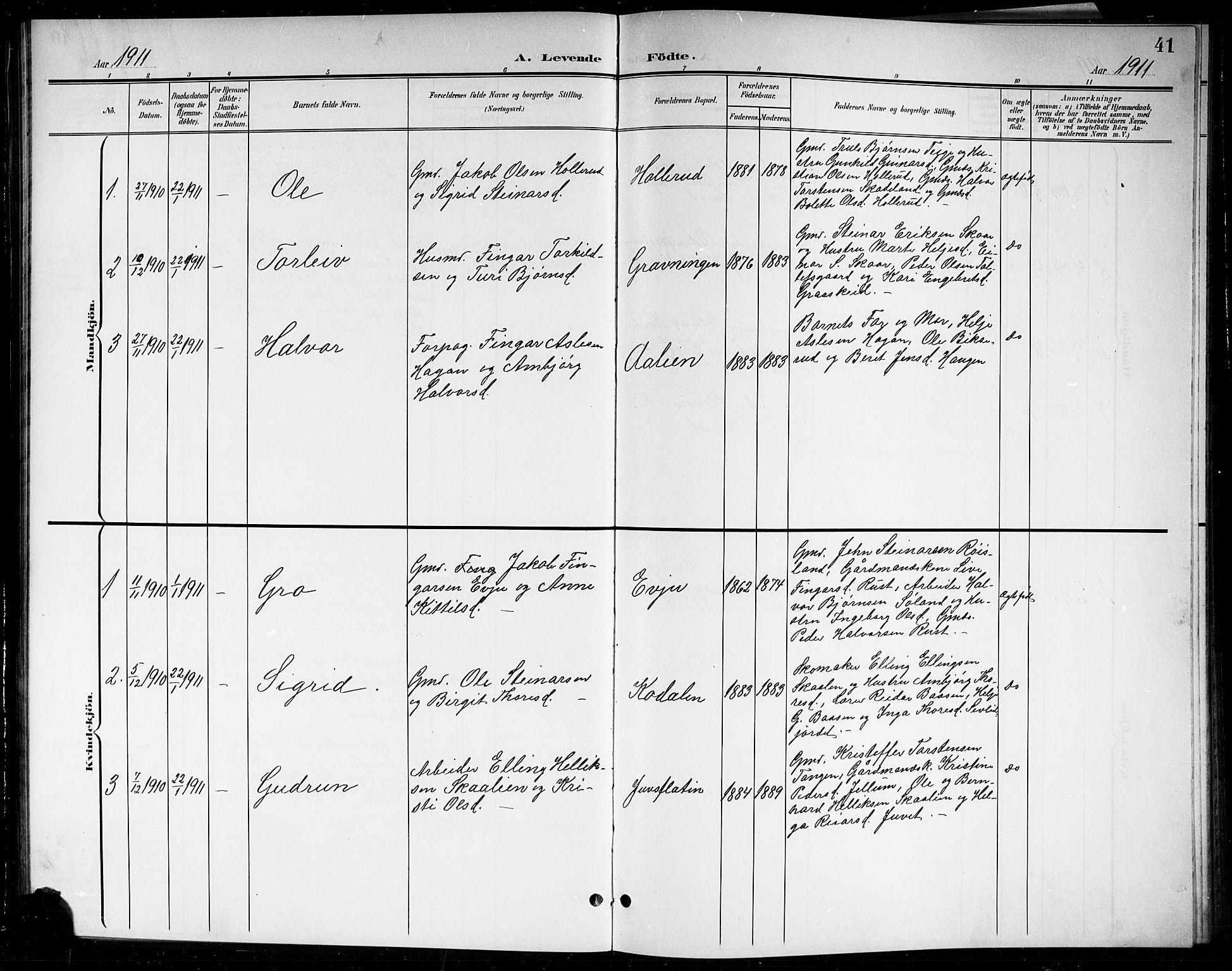SAKO, Sigdal kirkebøker, G/Gb/L0003: Klokkerbok nr. II 3, 1901-1916, s. 41