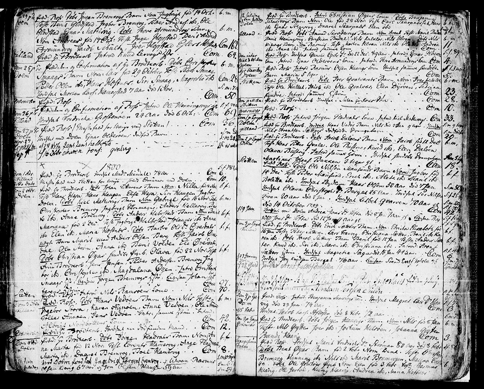 SAT, Ministerialprotokoller, klokkerbøker og fødselsregistre - Sør-Trøndelag, 634/L0526: Ministerialbok nr. 634A02, 1775-1818, s. 121