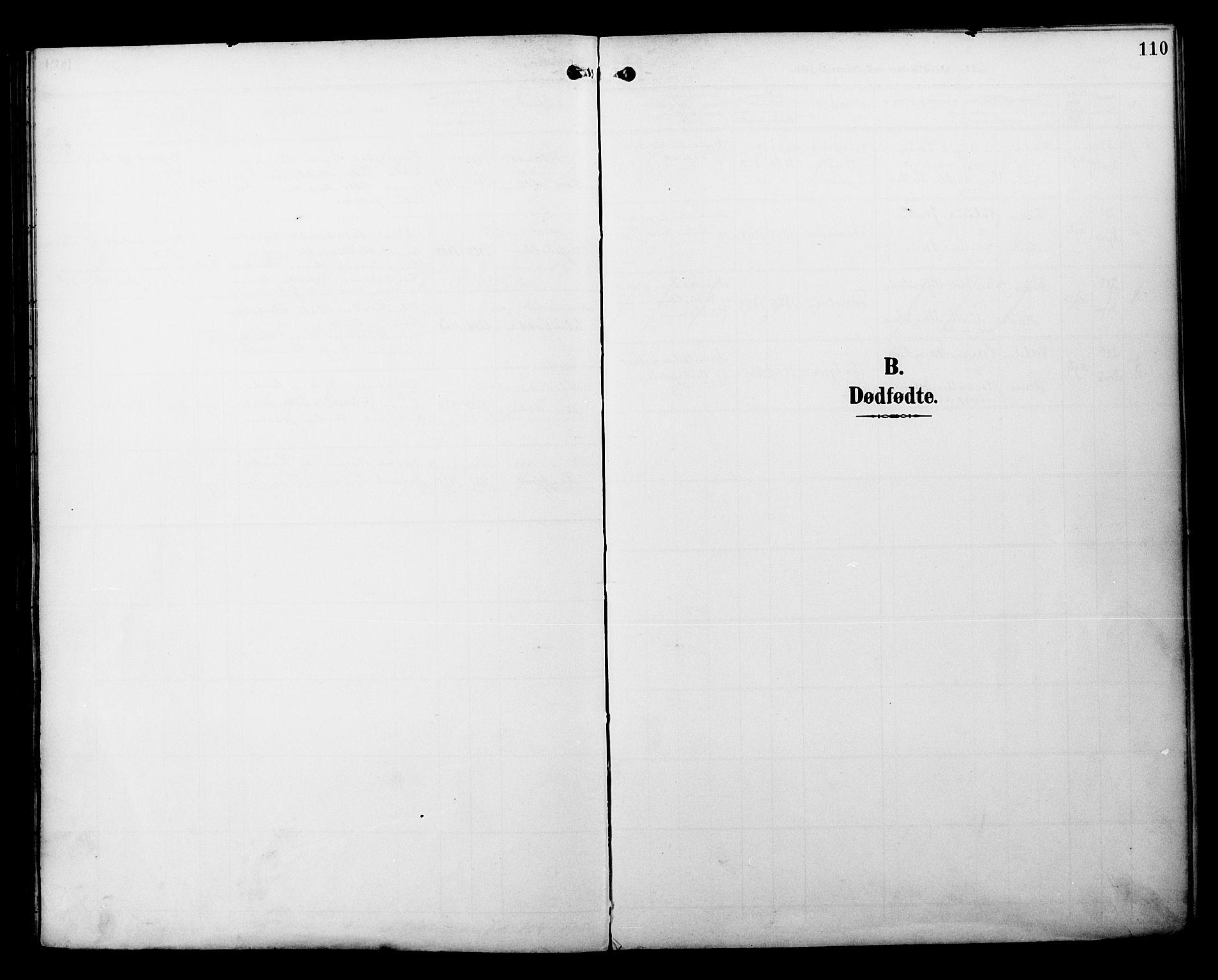SATØ, Alta sokneprestembete, Ministerialbok nr. 3, 1892-1904, s. 110