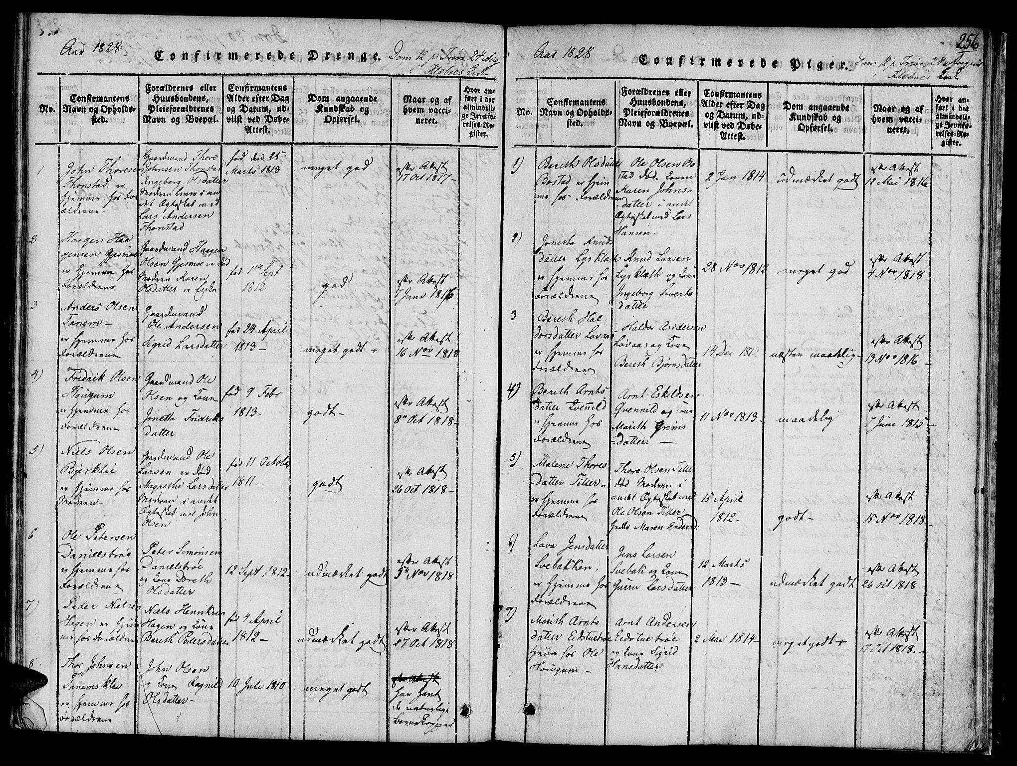 SAT, Ministerialprotokoller, klokkerbøker og fødselsregistre - Sør-Trøndelag, 618/L0439: Ministerialbok nr. 618A04 /1, 1816-1843, s. 256