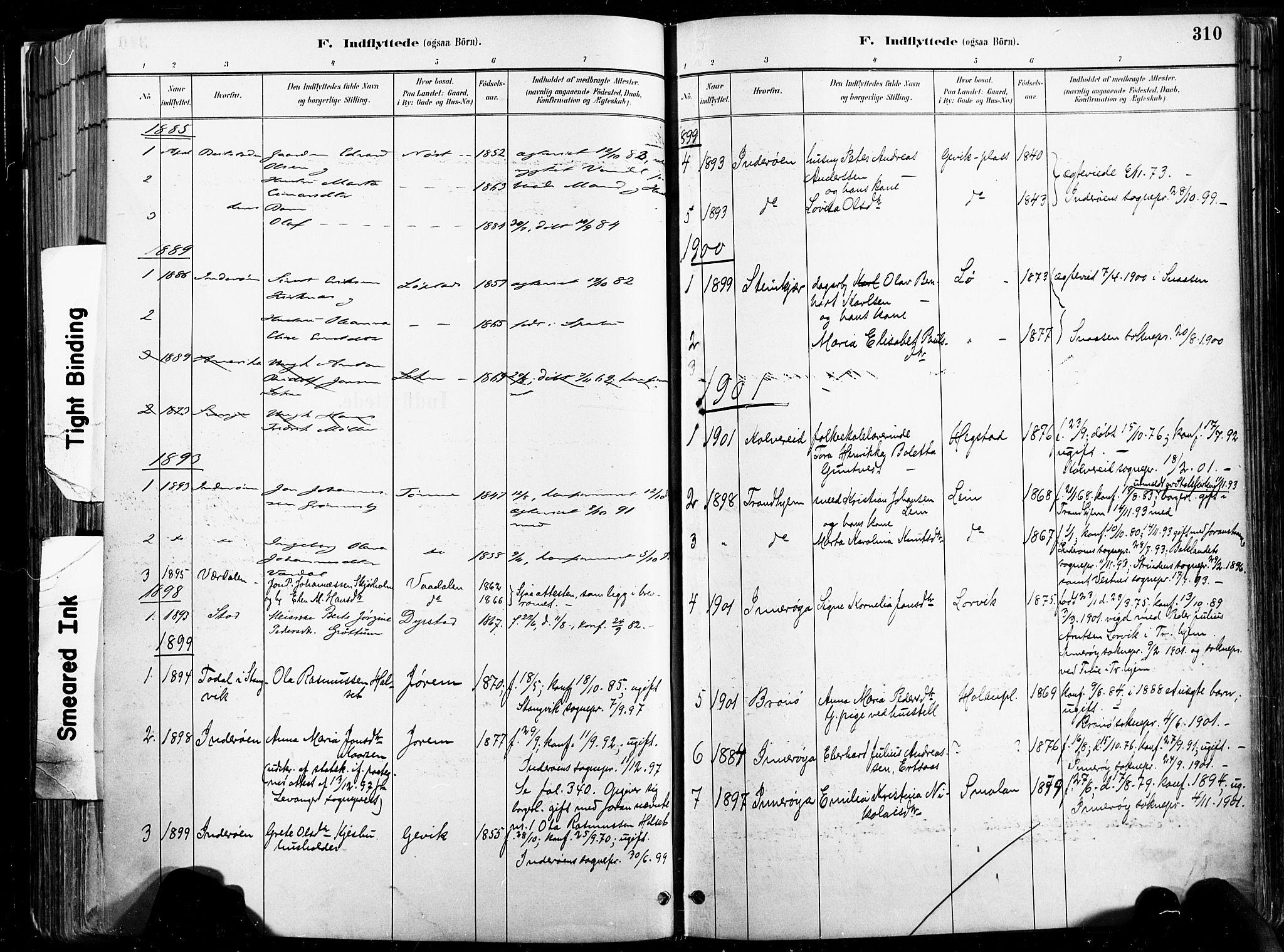 SAT, Ministerialprotokoller, klokkerbøker og fødselsregistre - Nord-Trøndelag, 735/L0351: Ministerialbok nr. 735A10, 1884-1908, s. 310