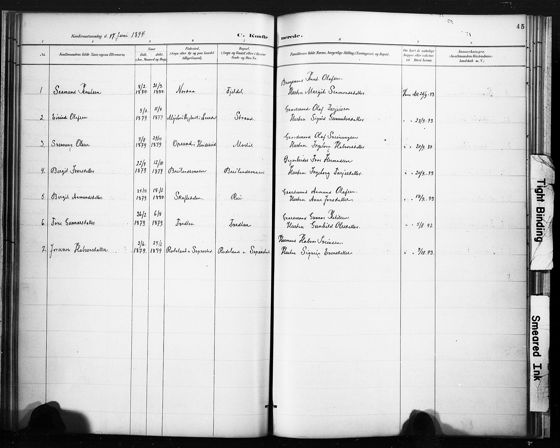 SAKO, Lårdal kirkebøker, F/Fc/L0002: Ministerialbok nr. III 2, 1887-1906, s. 45