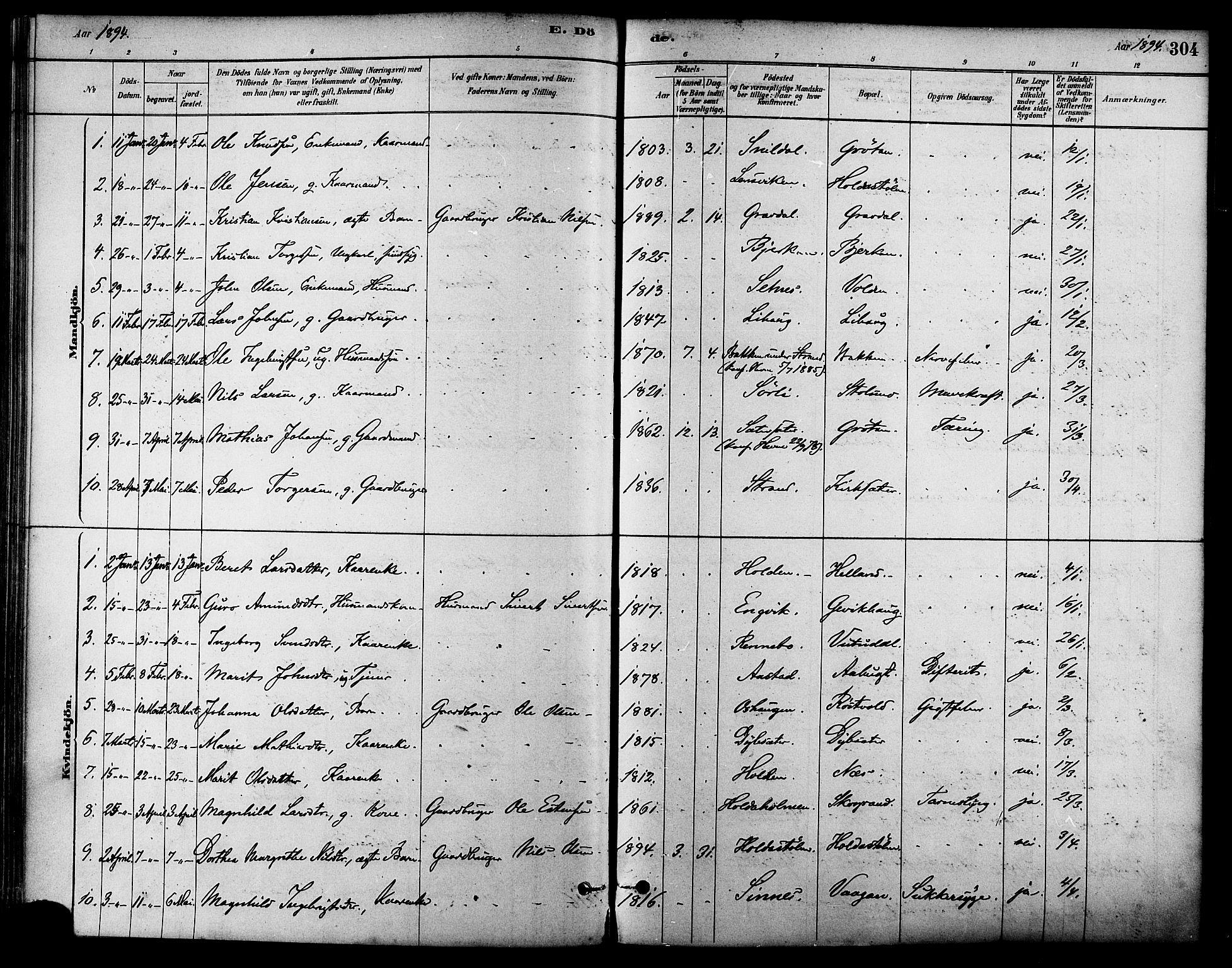 SAT, Ministerialprotokoller, klokkerbøker og fødselsregistre - Sør-Trøndelag, 630/L0496: Ministerialbok nr. 630A09, 1879-1895, s. 304
