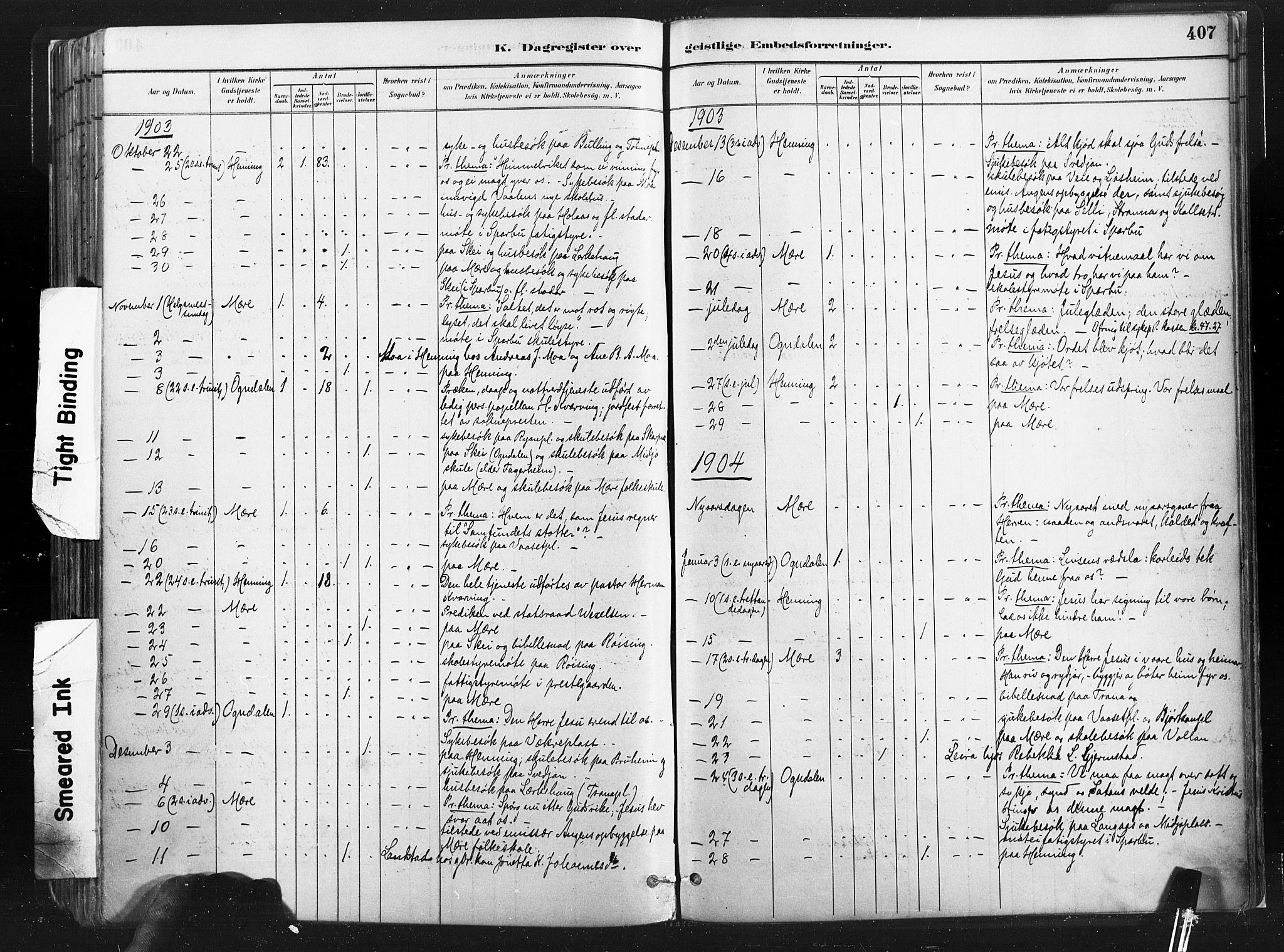 SAT, Ministerialprotokoller, klokkerbøker og fødselsregistre - Nord-Trøndelag, 735/L0351: Ministerialbok nr. 735A10, 1884-1908, s. 407