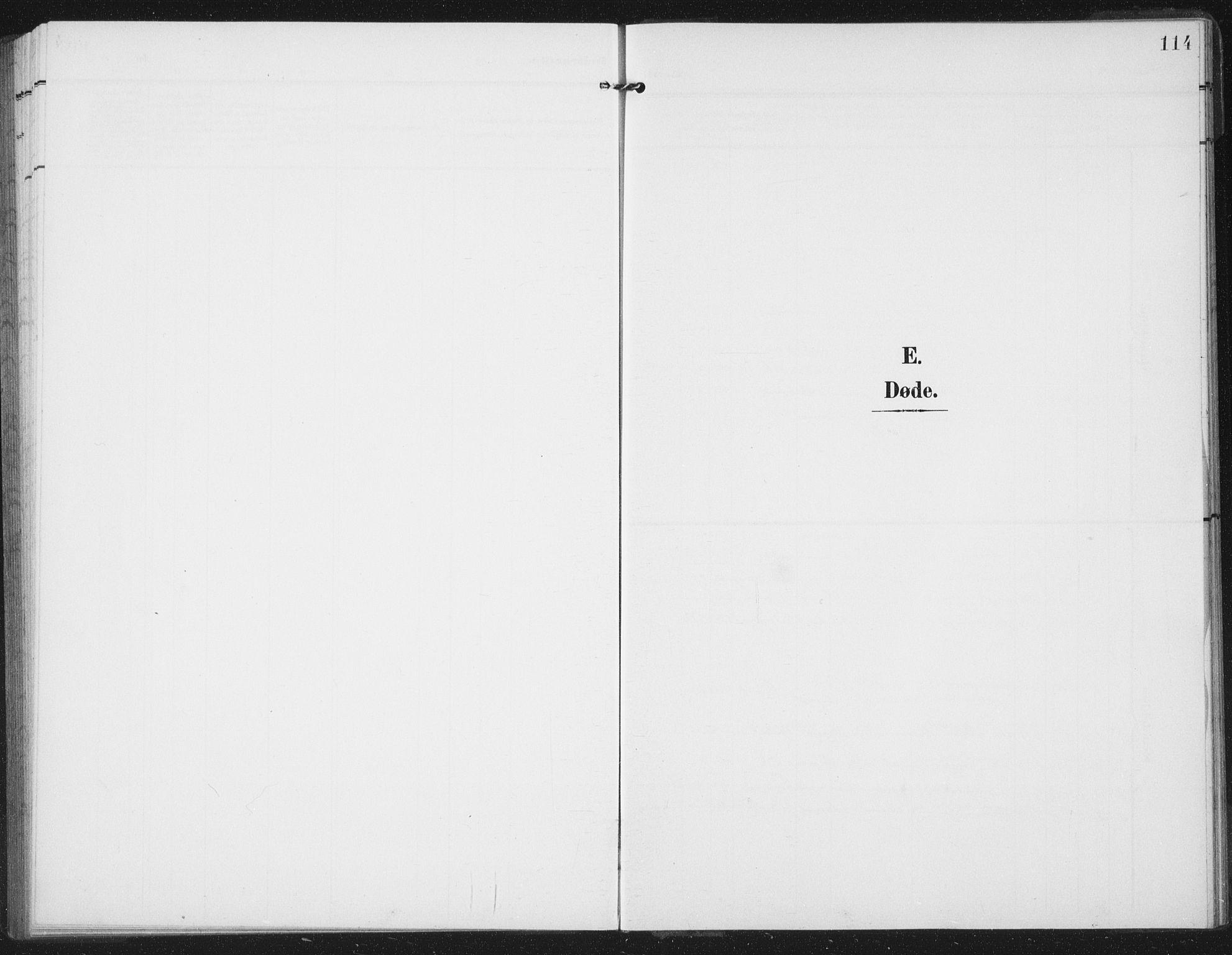 SAT, Ministerialprotokoller, klokkerbøker og fødselsregistre - Nord-Trøndelag, 747/L0460: Klokkerbok nr. 747C02, 1908-1939, s. 114