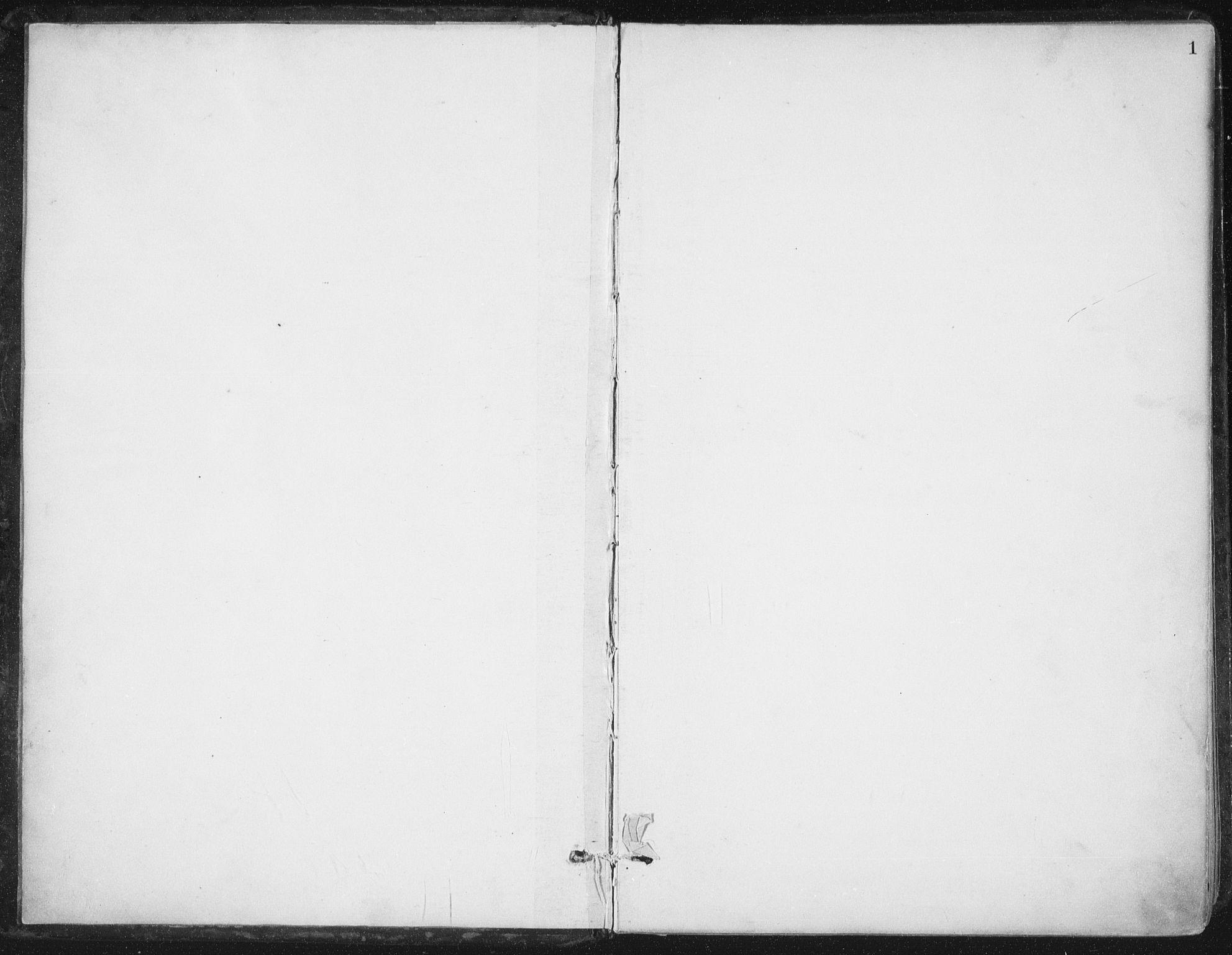 SAT, Ministerialprotokoller, klokkerbøker og fødselsregistre - Nord-Trøndelag, 784/L0673: Ministerialbok nr. 784A08, 1888-1899, s. 1