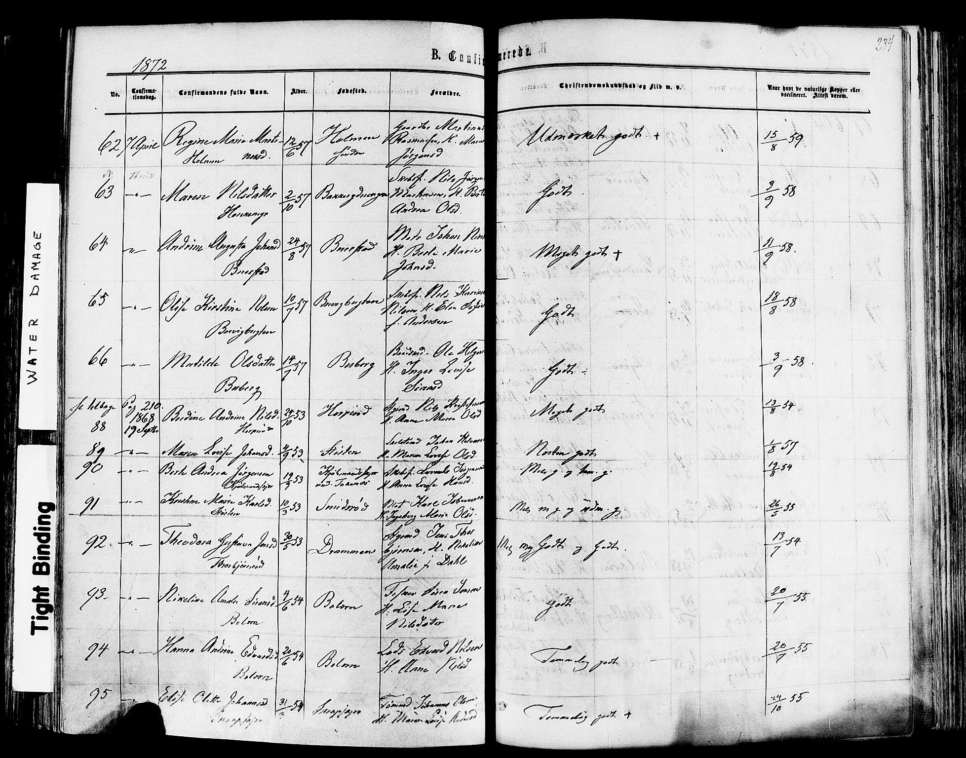 SAKO, Nøtterøy kirkebøker, F/Fa/L0007: Ministerialbok nr. I 7, 1865-1877, s. 234