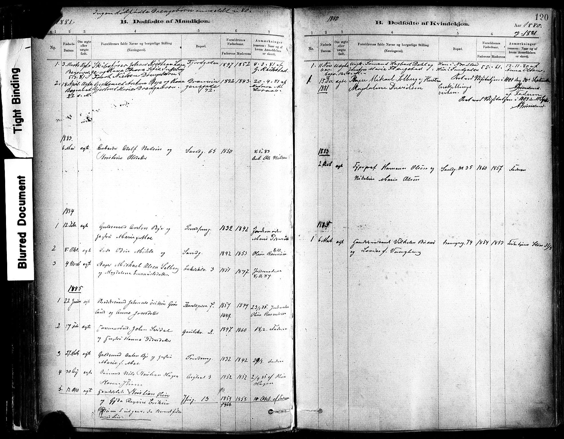SAT, Ministerialprotokoller, klokkerbøker og fødselsregistre - Sør-Trøndelag, 602/L0119: Ministerialbok nr. 602A17, 1880-1901, s. 120