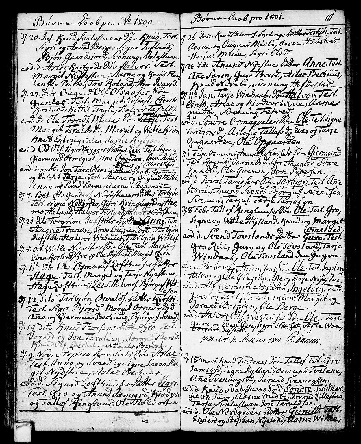 SAKO, Vinje kirkebøker, F/Fa/L0002: Ministerialbok nr. I 2, 1767-1814, s. 111
