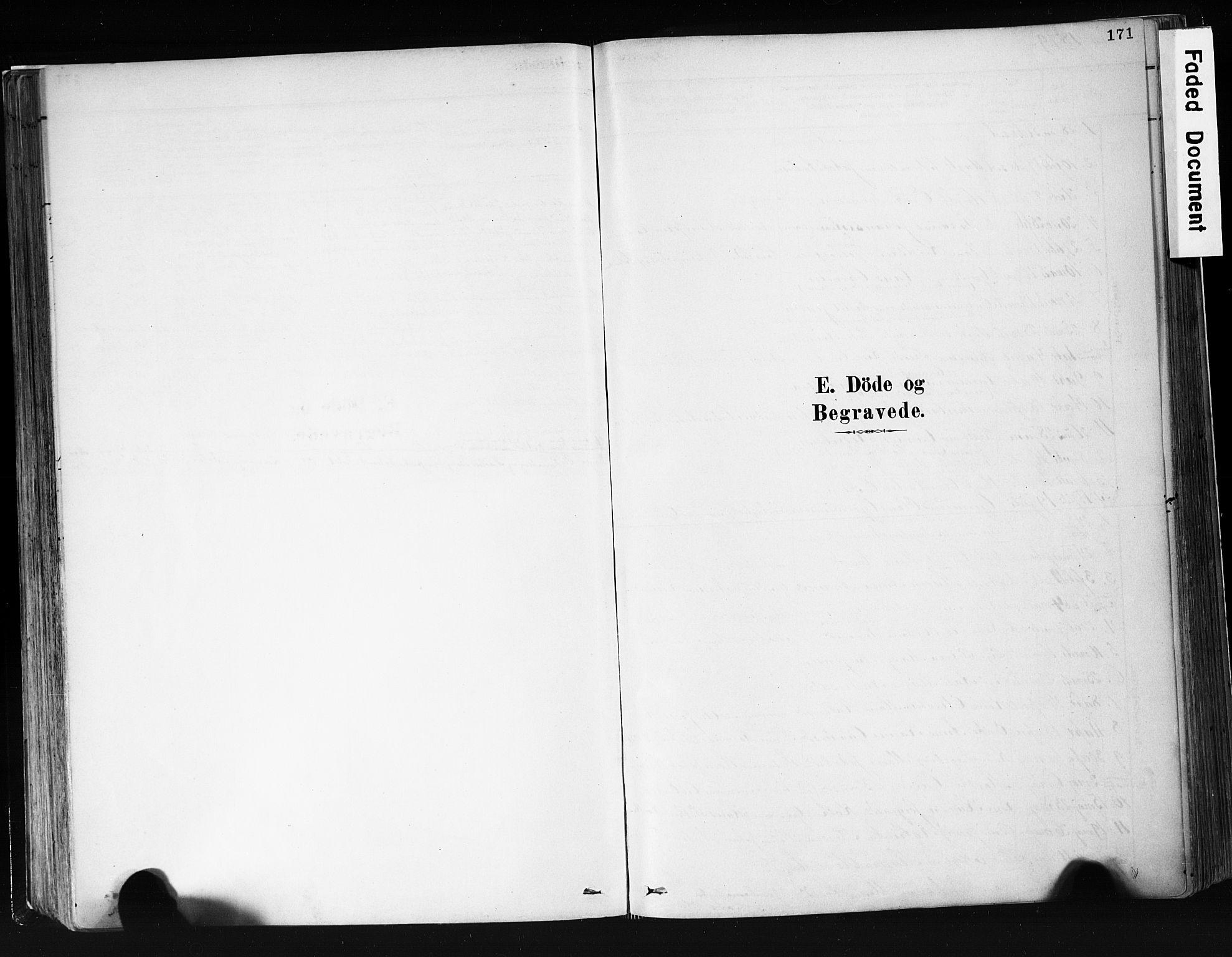 SAKO, Eidanger kirkebøker, F/Fa/L0012: Ministerialbok nr. 12, 1879-1900, s. 171
