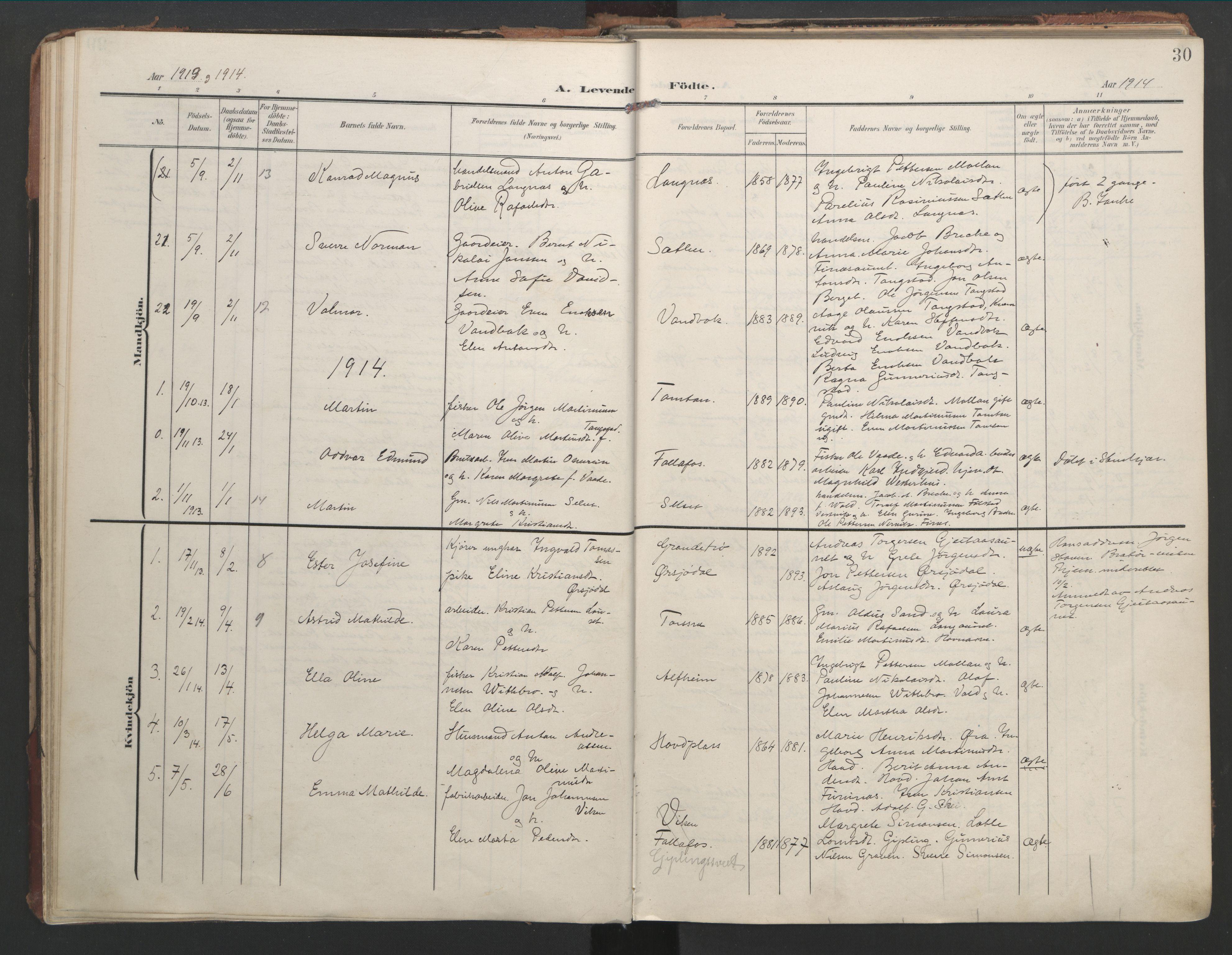 SAT, Ministerialprotokoller, klokkerbøker og fødselsregistre - Nord-Trøndelag, 744/L0421: Ministerialbok nr. 744A05, 1905-1930, s. 30