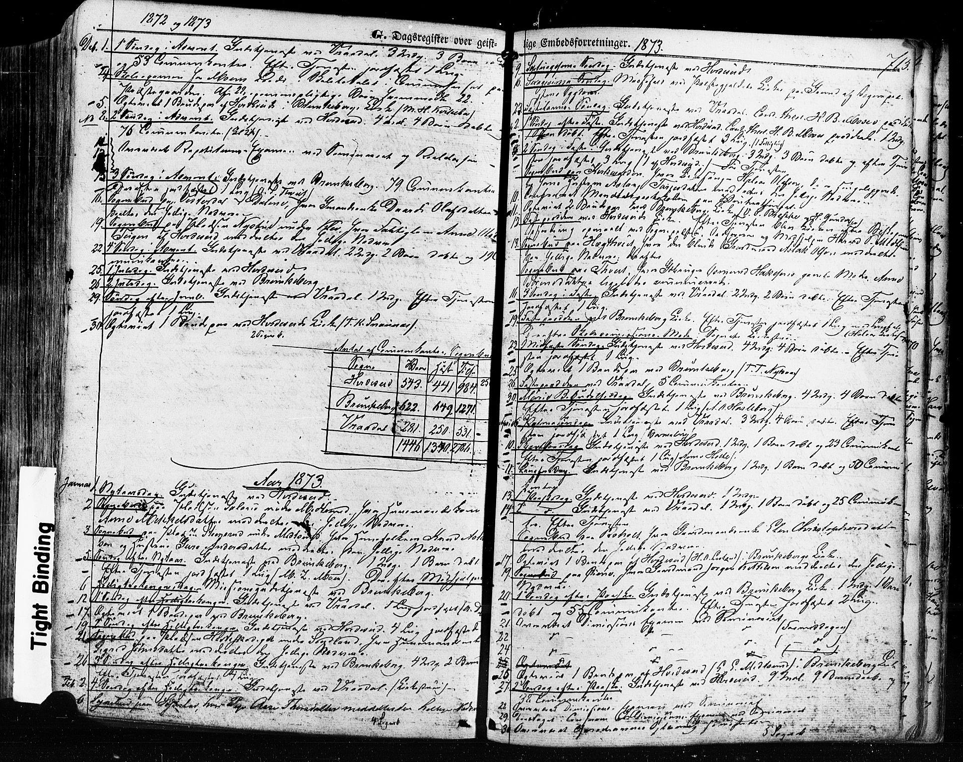 SAKO, Kviteseid kirkebøker, F/Fa/L0007: Ministerialbok nr. I 7, 1859-1881, s. 713