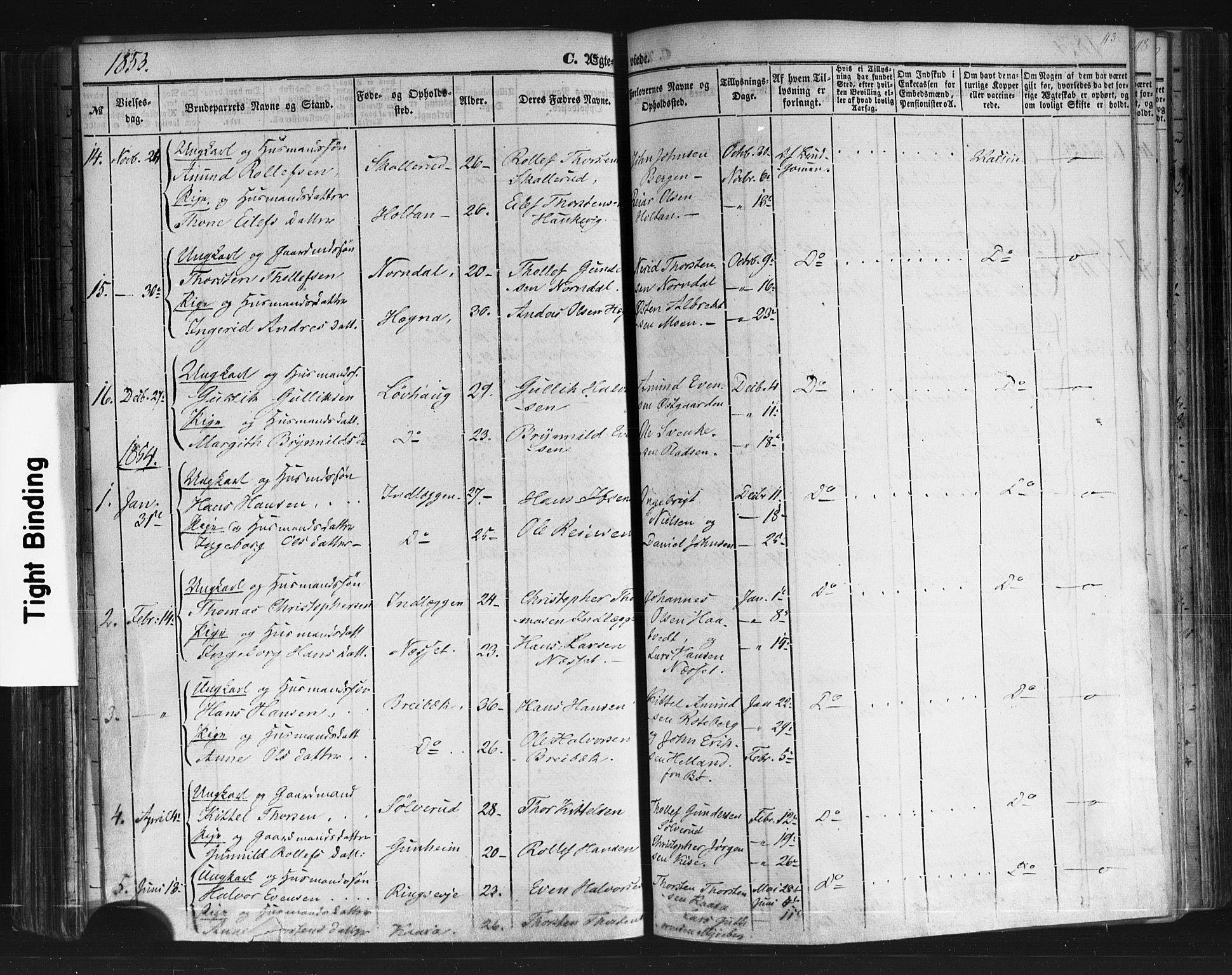 SAKO, Sauherad kirkebøker, F/Fb/L0001: Ministerialbok nr. II 1, 1851-1877, s. 113