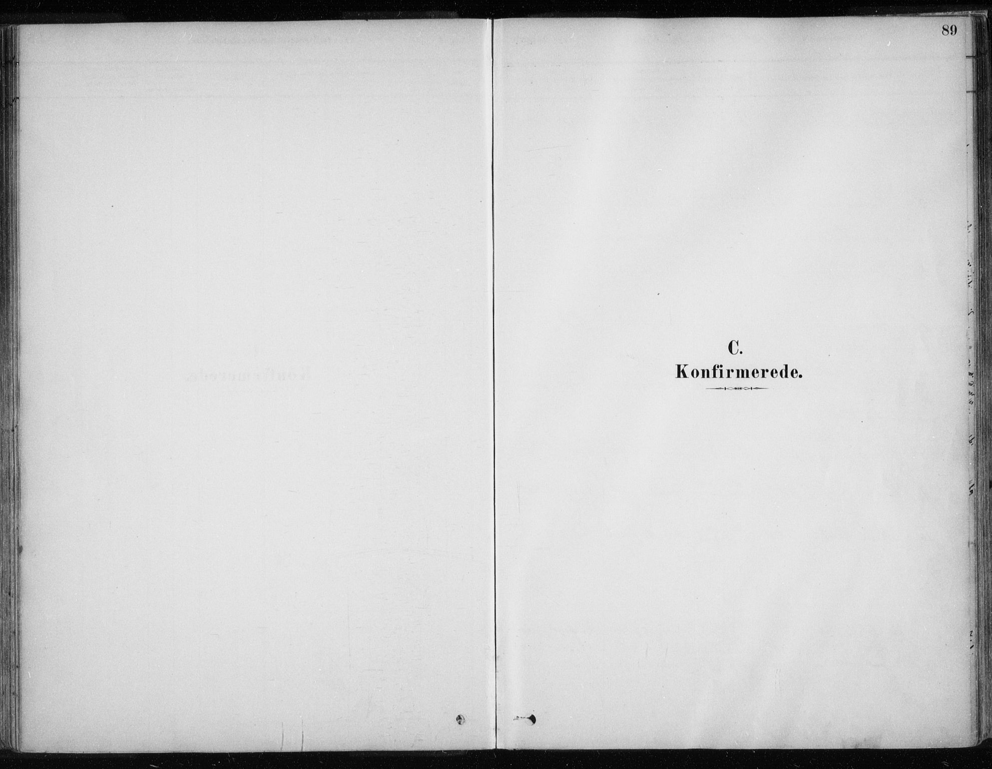 SATØ, Karasjok sokneprestkontor, H/Ha/L0002kirke: Ministerialbok nr. 2, 1885-1906, s. 89