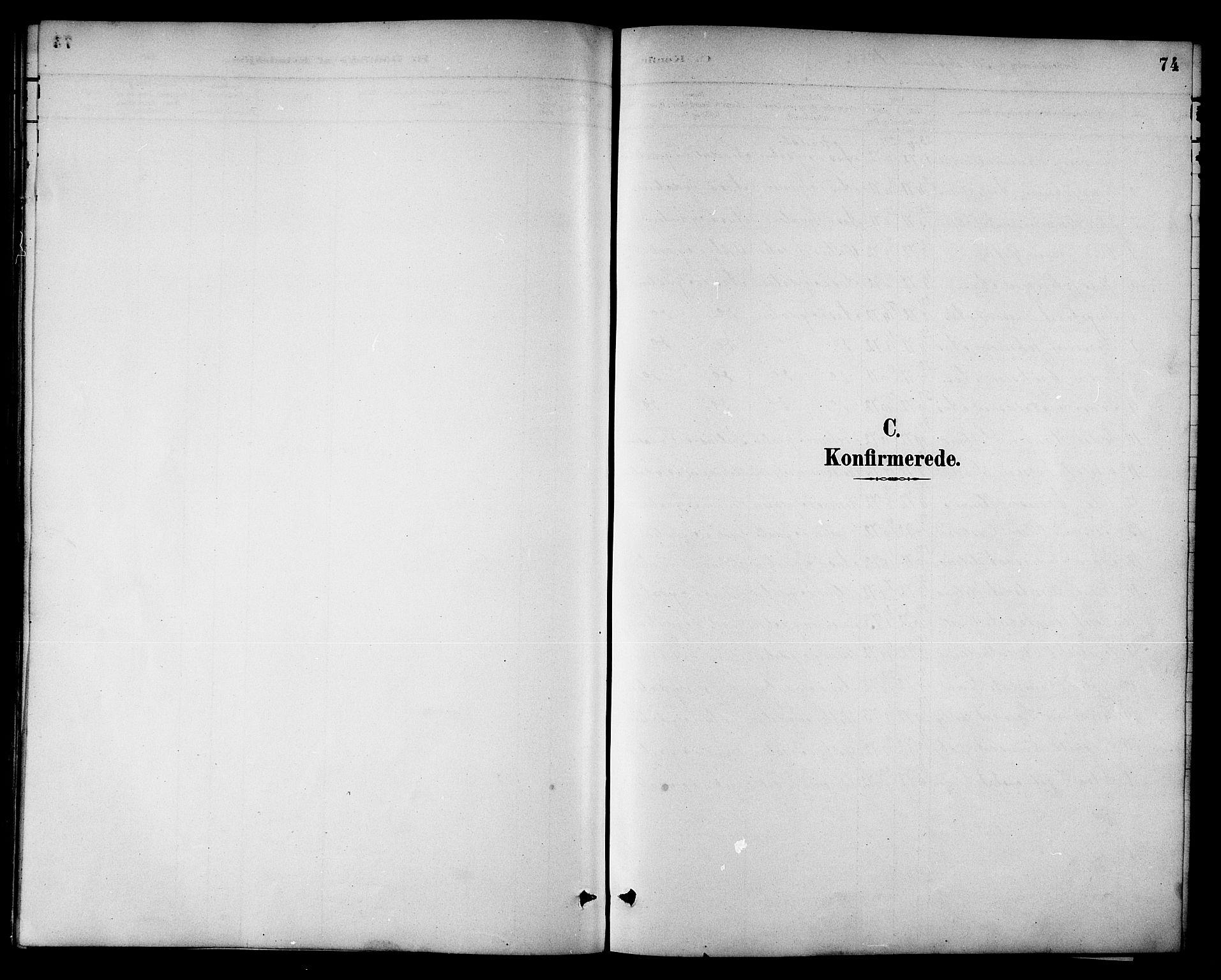 SAT, Ministerialprotokoller, klokkerbøker og fødselsregistre - Sør-Trøndelag, 698/L1167: Klokkerbok nr. 698C04, 1888-1907, s. 74