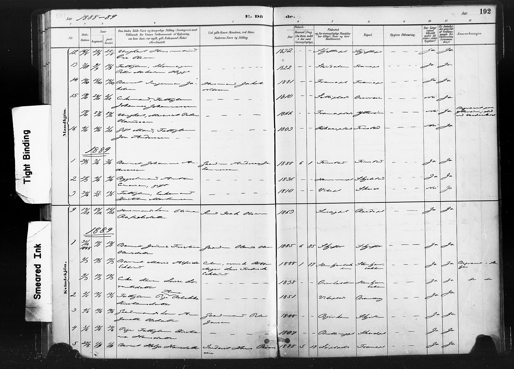 SAT, Ministerialprotokoller, klokkerbøker og fødselsregistre - Nord-Trøndelag, 736/L0361: Ministerialbok nr. 736A01, 1884-1906, s. 192