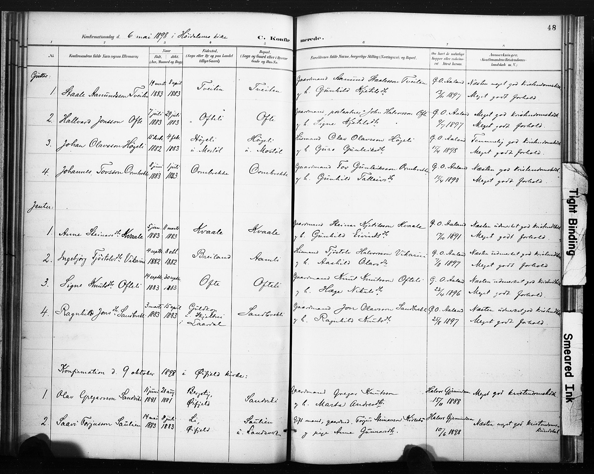 SAKO, Lårdal kirkebøker, F/Fc/L0002: Ministerialbok nr. III 2, 1887-1906, s. 48