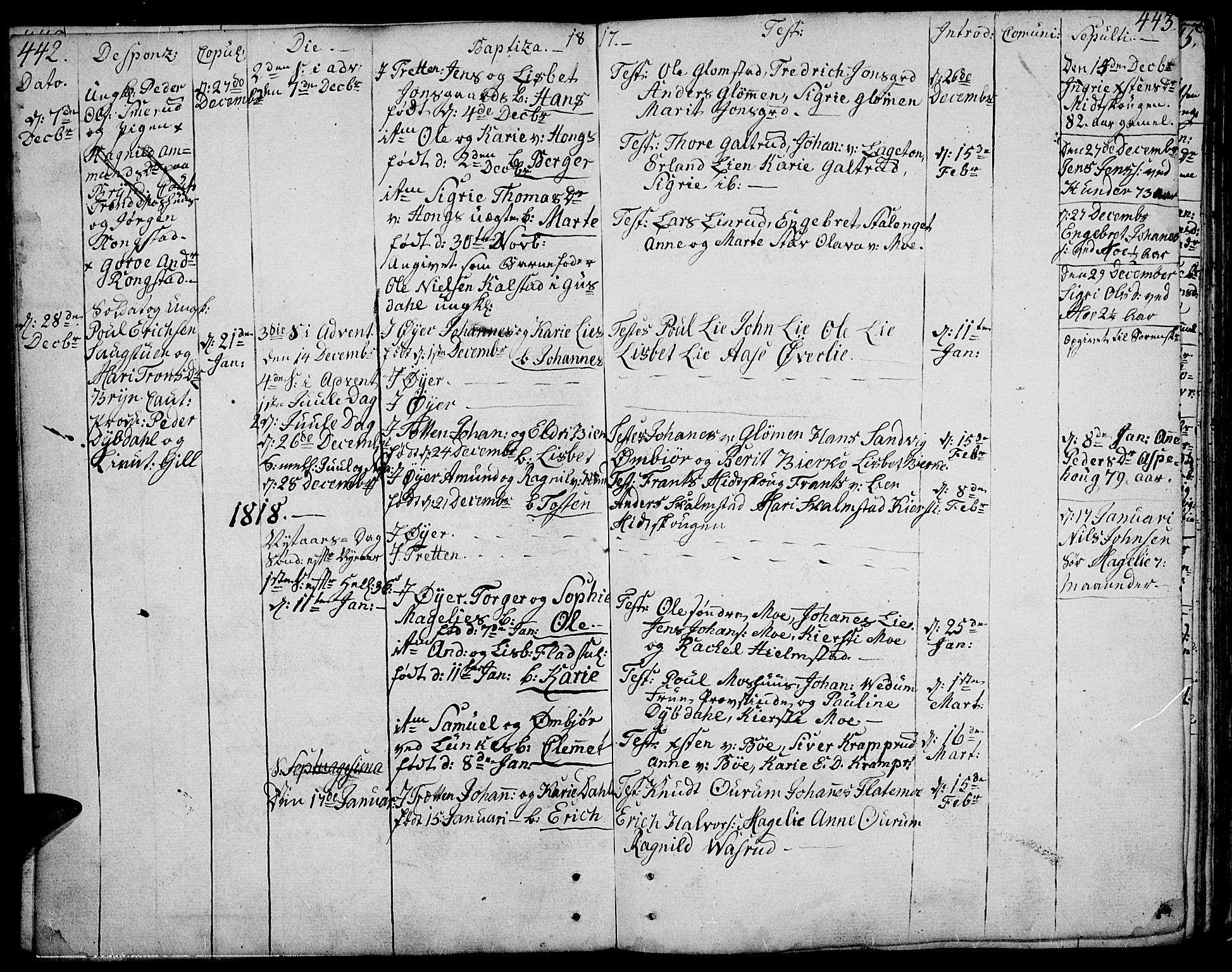 SAH, Øyer prestekontor, Ministerialbok nr. 3, 1784-1824, s. 442-443