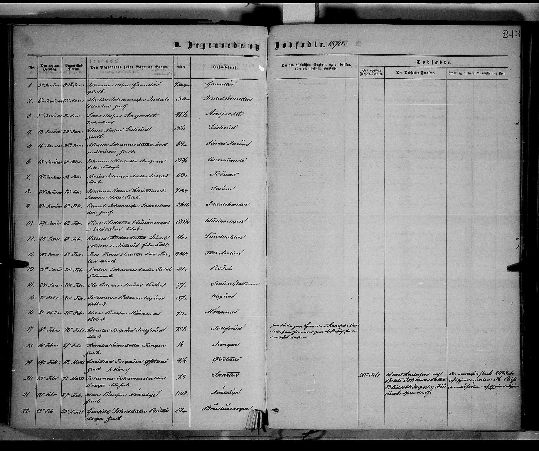 SAH, Vestre Toten prestekontor, H/Ha/Haa/L0008: Ministerialbok nr. 8, 1870-1877, s. 243
