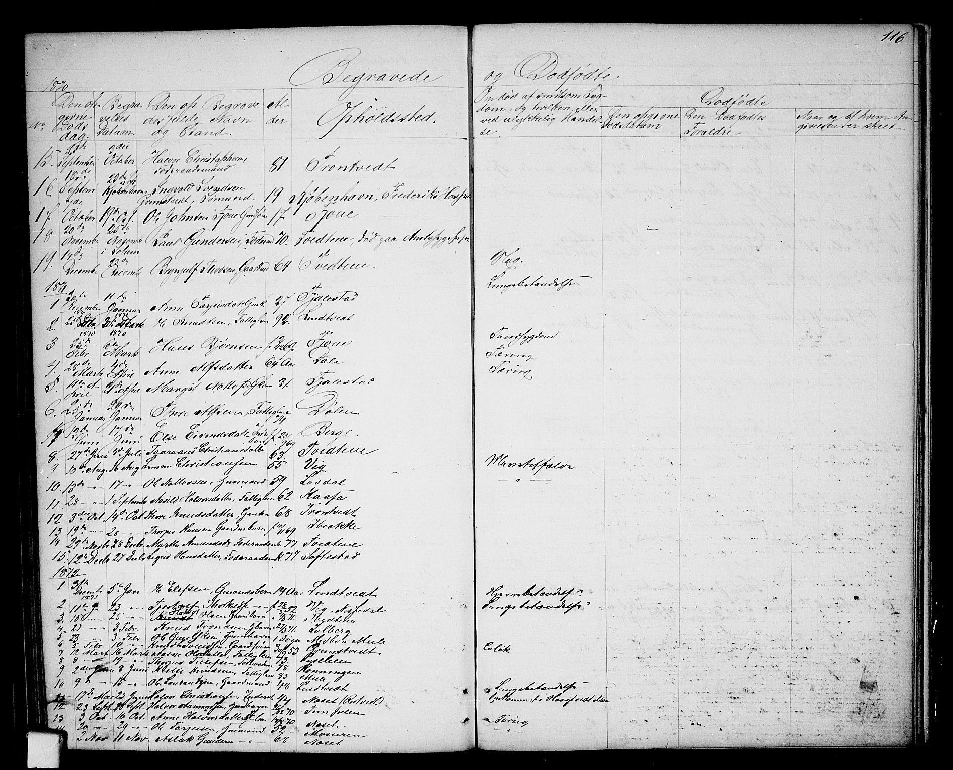 SAKO, Nissedal kirkebøker, G/Ga/L0002: Klokkerbok nr. I 2, 1861-1887, s. 116