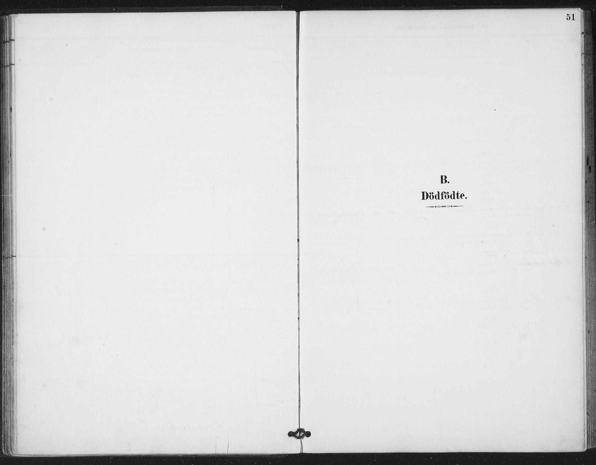 SAT, Ministerialprotokoller, klokkerbøker og fødselsregistre - Nord-Trøndelag, 783/L0660: Ministerialbok nr. 783A02, 1886-1918, s. 51