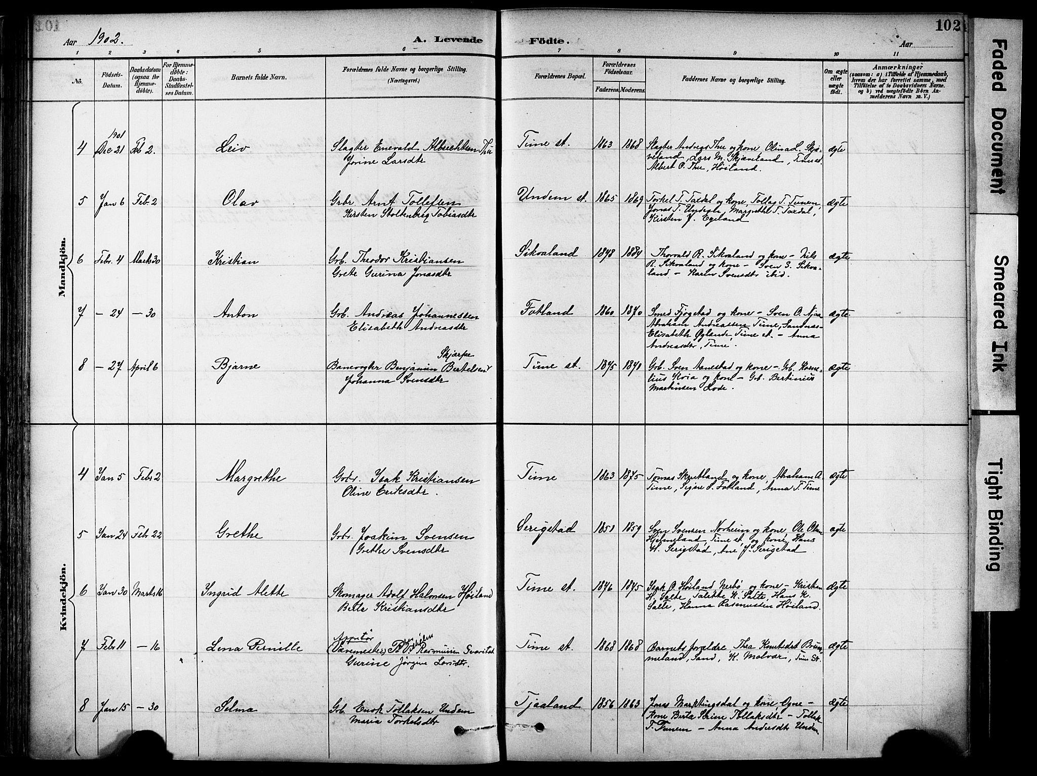 SAST, Lye sokneprestkontor, 30BA/L0011: Ministerialbok nr. A 9, 1893-1903, s. 102