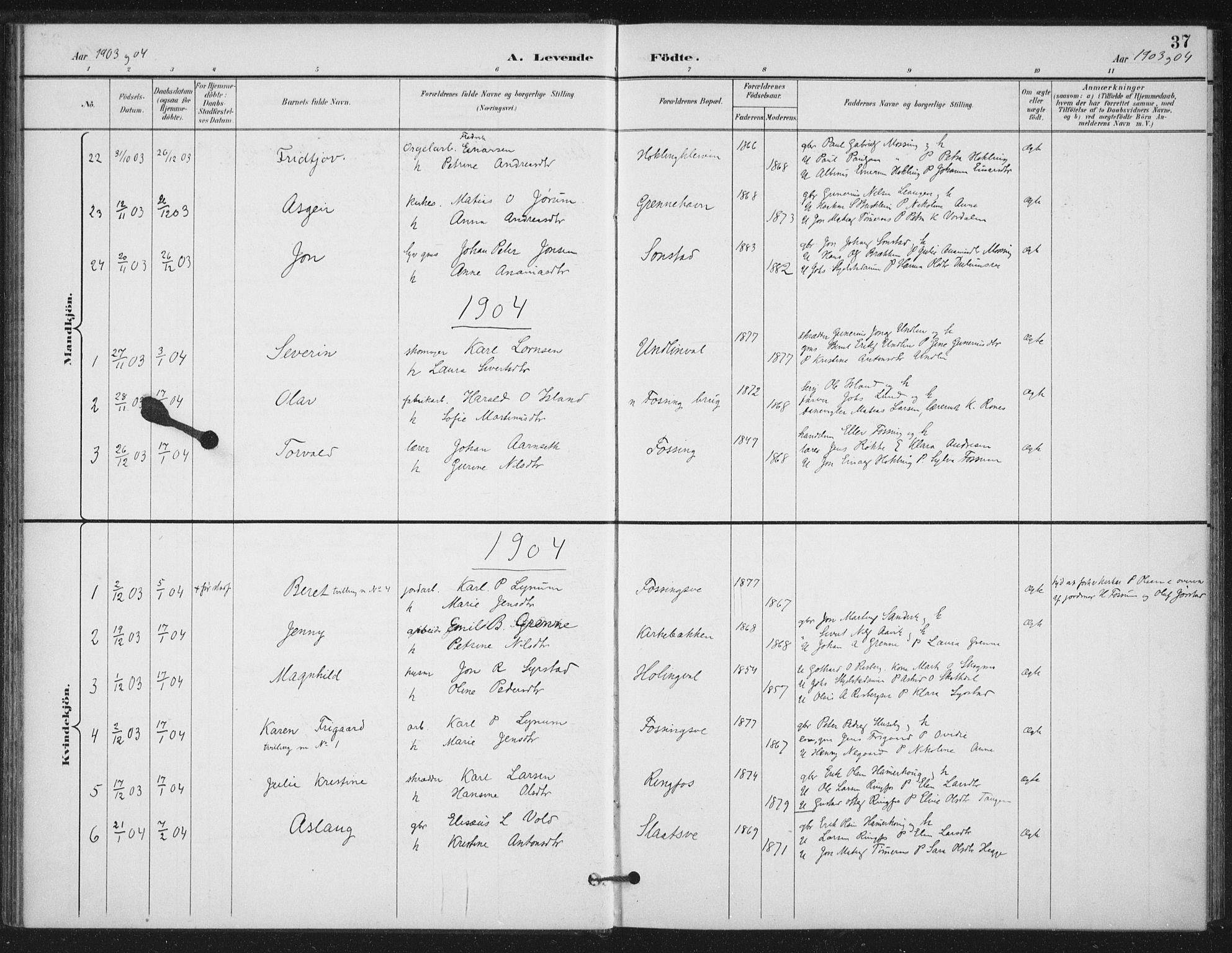 SAT, Ministerialprotokoller, klokkerbøker og fødselsregistre - Nord-Trøndelag, 714/L0131: Ministerialbok nr. 714A02, 1896-1918, s. 37