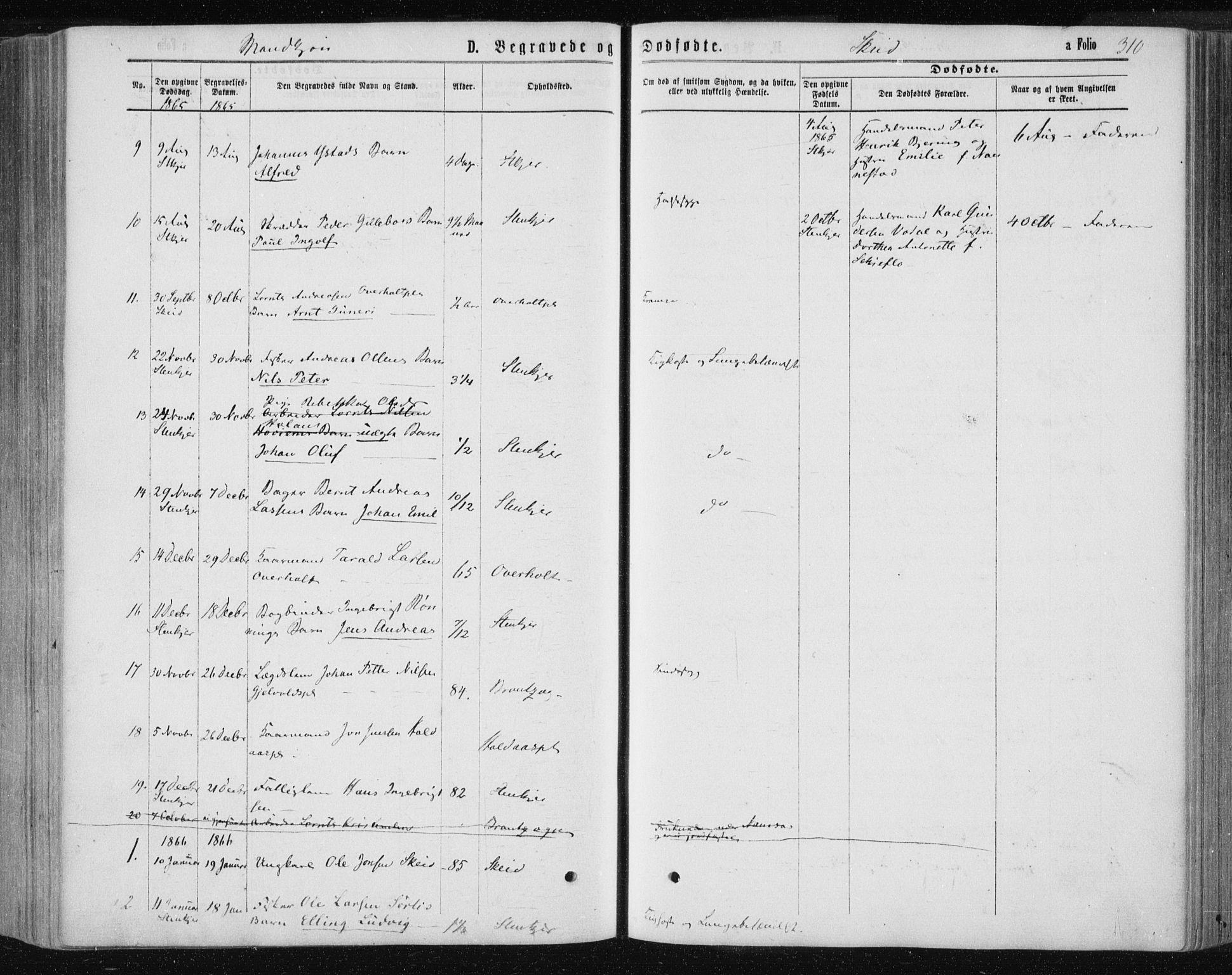 SAT, Ministerialprotokoller, klokkerbøker og fødselsregistre - Nord-Trøndelag, 735/L0345: Ministerialbok nr. 735A08 /2, 1863-1872, s. 310