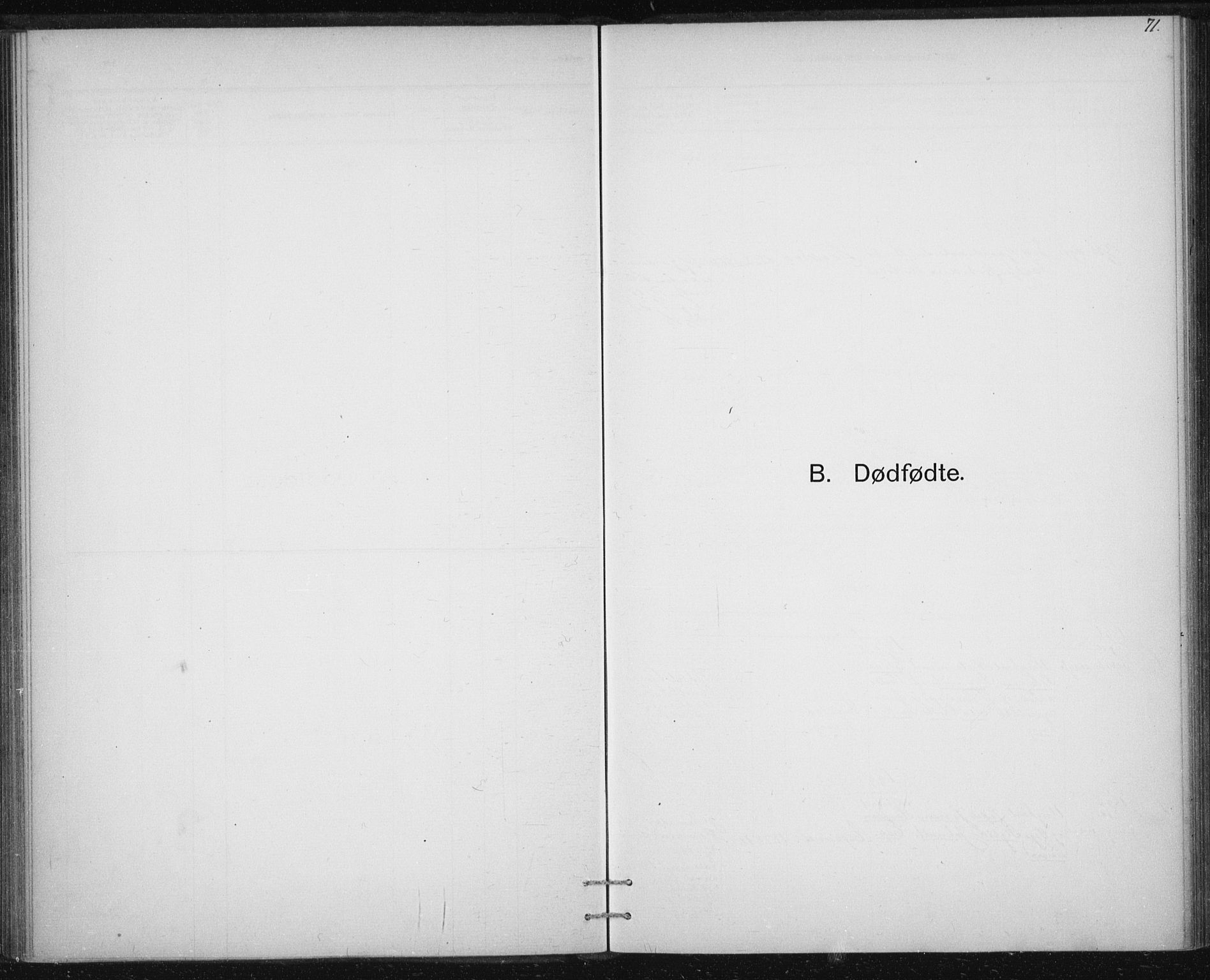 SAT, Ministerialprotokoller, klokkerbøker og fødselsregistre - Sør-Trøndelag, 613/L0392: Ministerialbok nr. 613A01, 1887-1906, s. 71