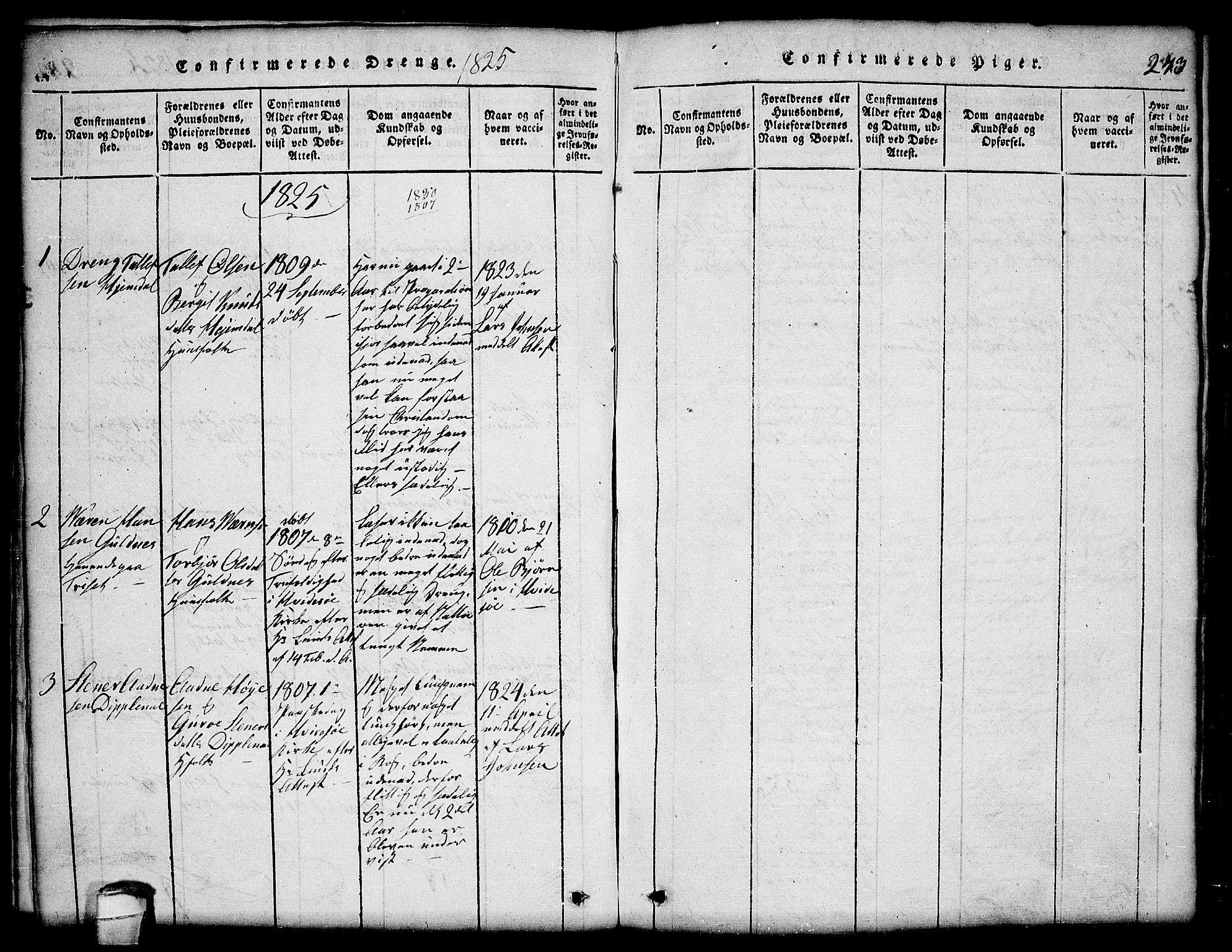 SAKO, Lårdal kirkebøker, G/Ga/L0001: Klokkerbok nr. I 1, 1815-1861, s. 243