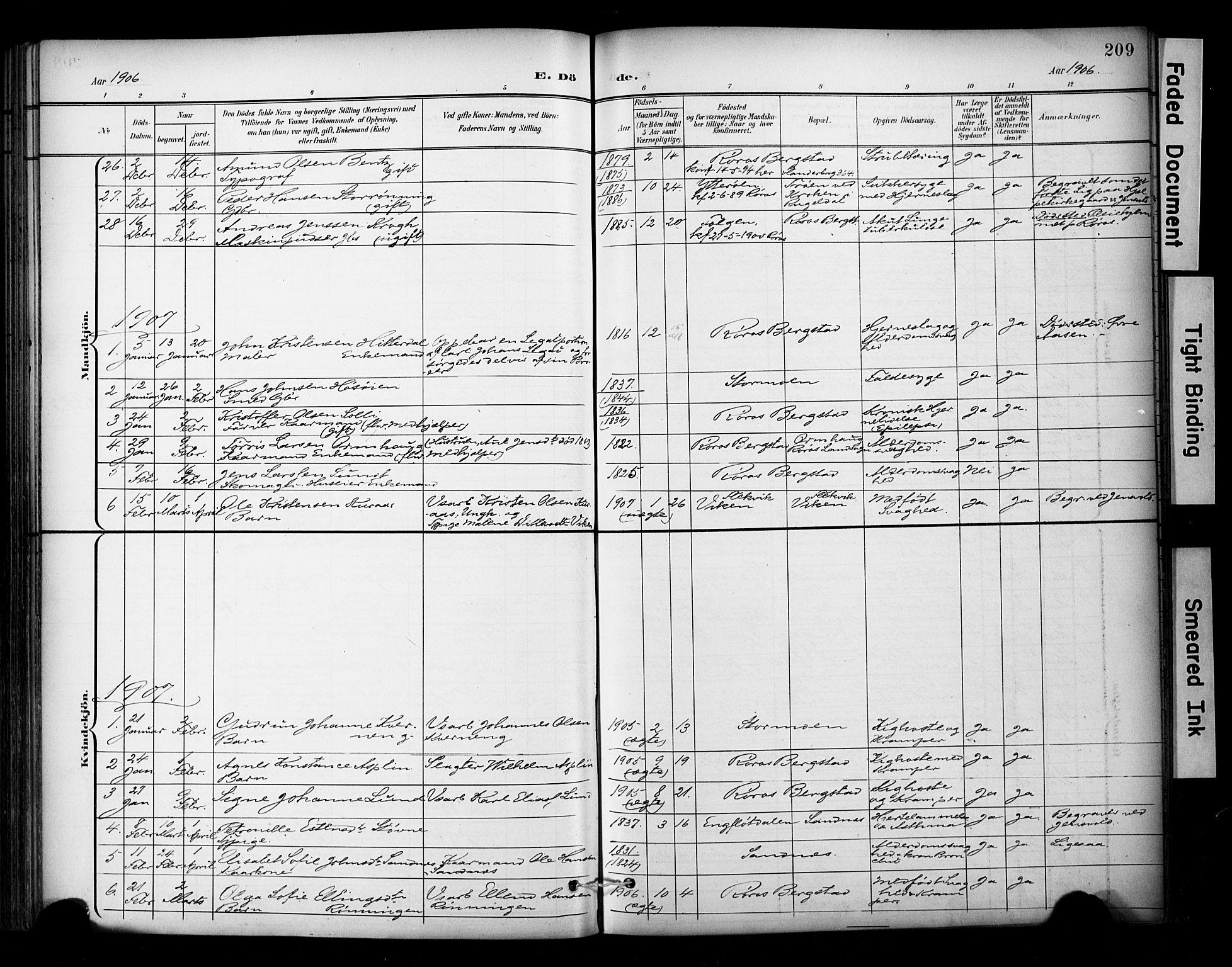 SAT, Ministerialprotokoller, klokkerbøker og fødselsregistre - Sør-Trøndelag, 681/L0936: Ministerialbok nr. 681A14, 1899-1908, s. 209