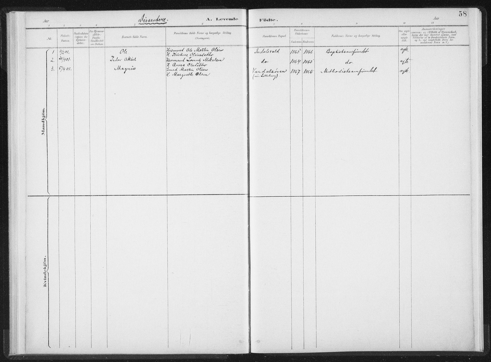 SAT, Ministerialprotokoller, klokkerbøker og fødselsregistre - Nord-Trøndelag, 724/L0263: Ministerialbok nr. 724A01, 1891-1907, s. 58