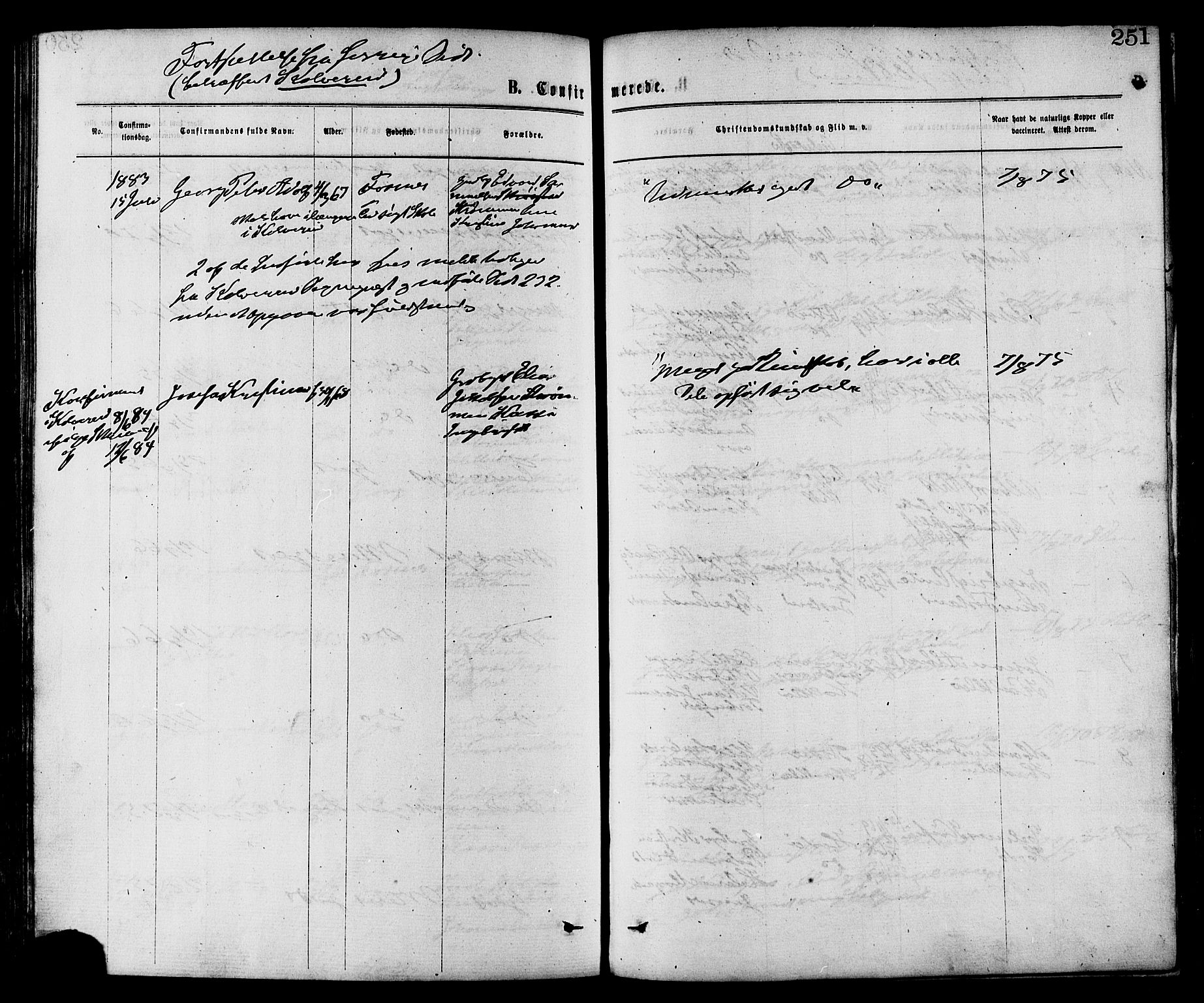 SAT, Ministerialprotokoller, klokkerbøker og fødselsregistre - Nord-Trøndelag, 773/L0616: Ministerialbok nr. 773A07, 1870-1887, s. 251