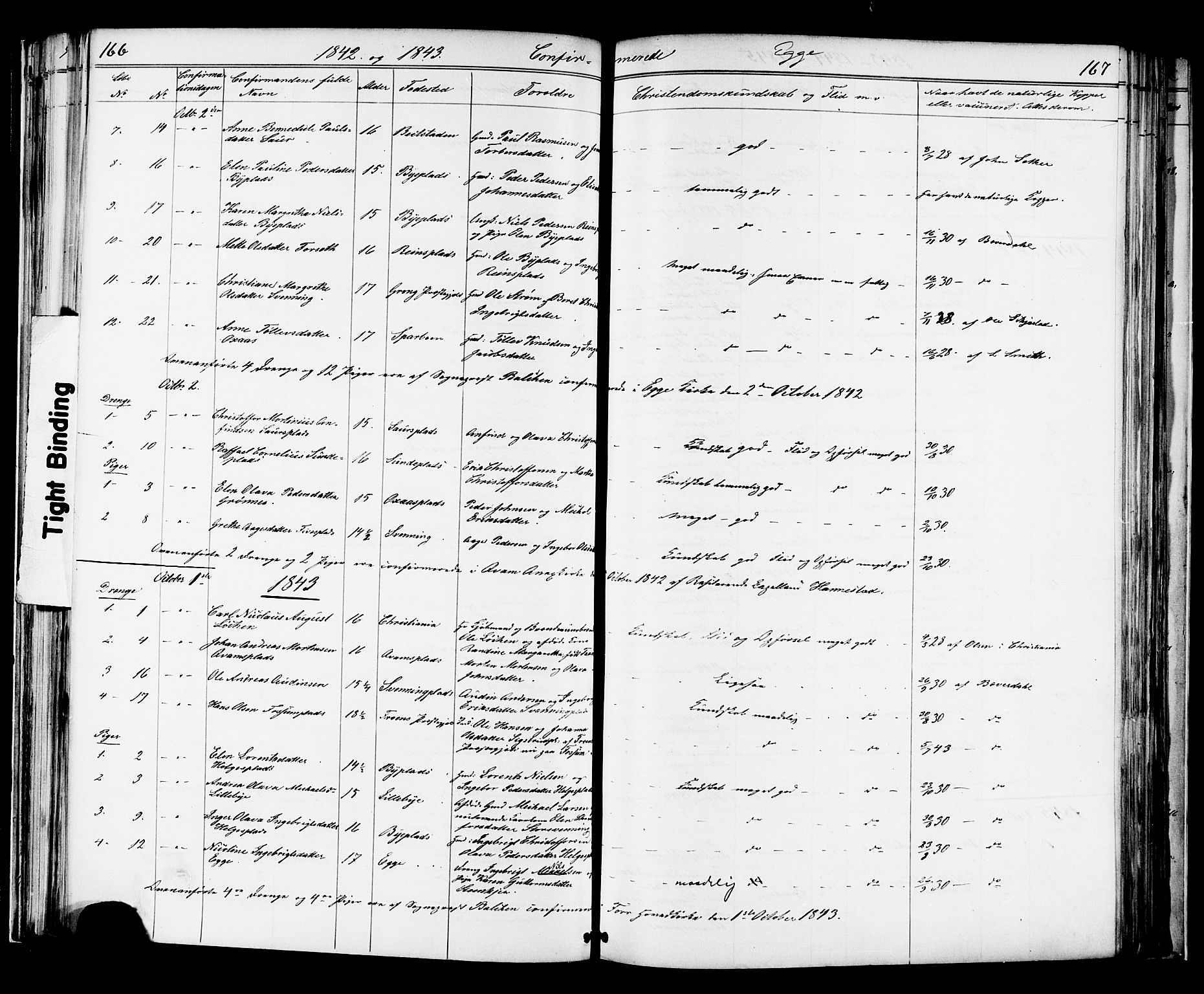 SAT, Ministerialprotokoller, klokkerbøker og fødselsregistre - Nord-Trøndelag, 739/L0367: Ministerialbok nr. 739A01 /3, 1838-1868, s. 166-167