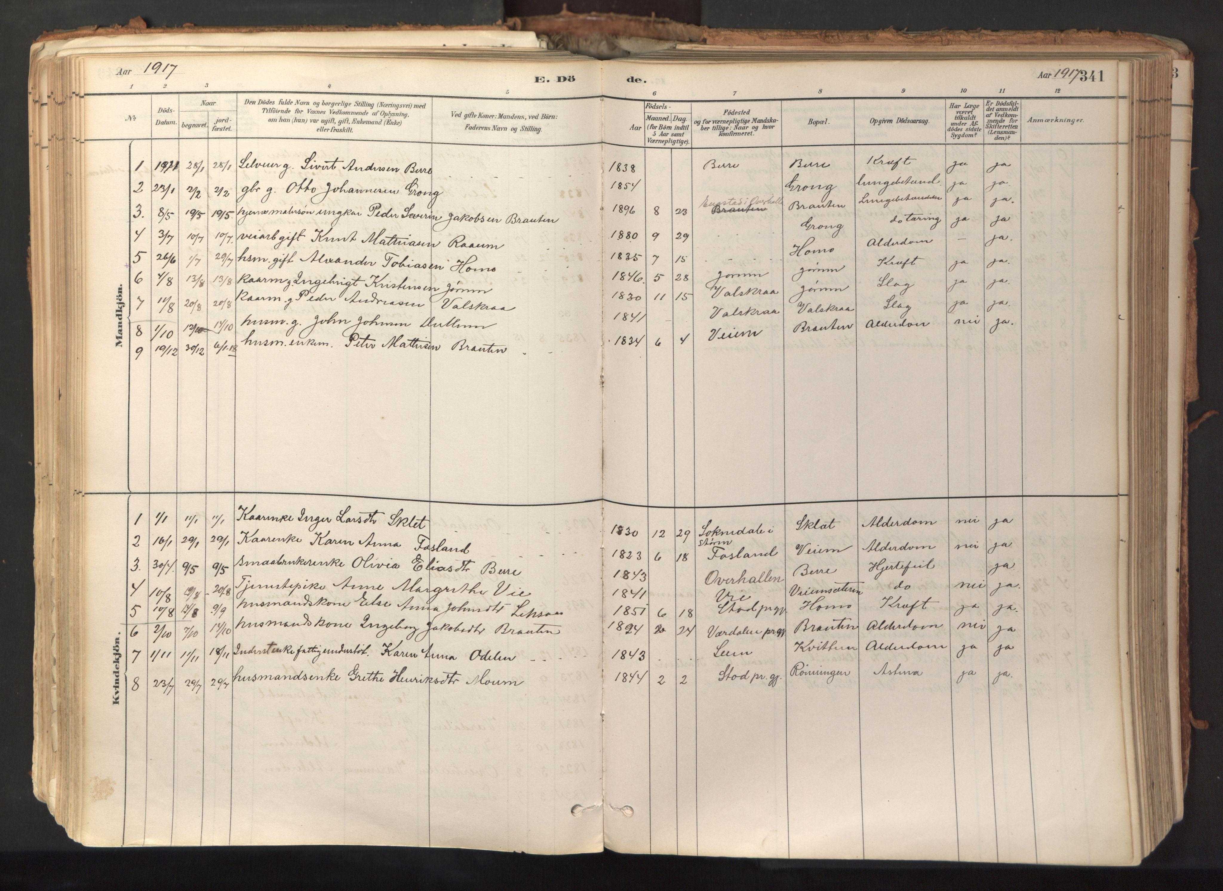 SAT, Ministerialprotokoller, klokkerbøker og fødselsregistre - Nord-Trøndelag, 758/L0519: Ministerialbok nr. 758A04, 1880-1926, s. 341