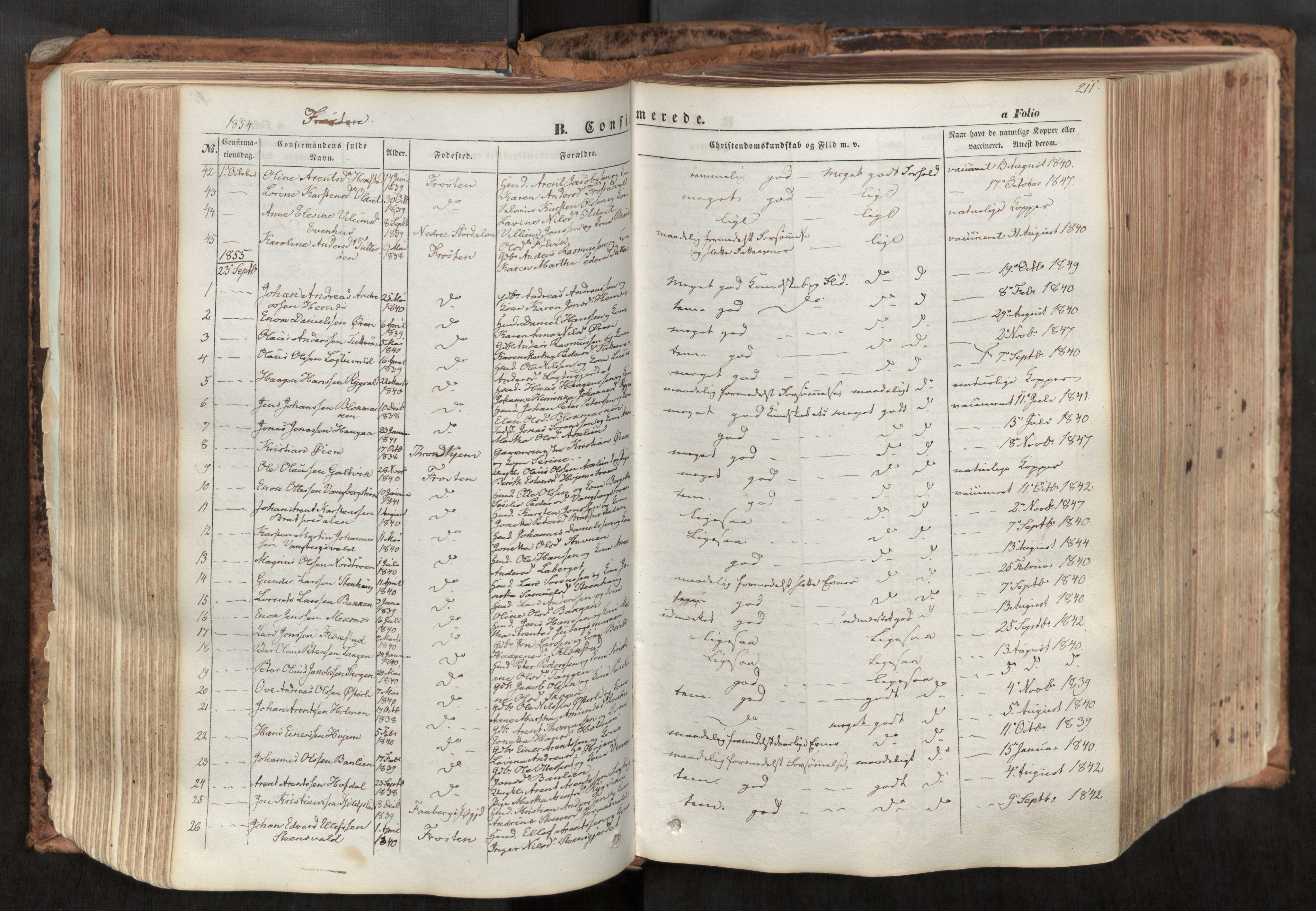 SAT, Ministerialprotokoller, klokkerbøker og fødselsregistre - Nord-Trøndelag, 713/L0116: Ministerialbok nr. 713A07, 1850-1877, s. 211
