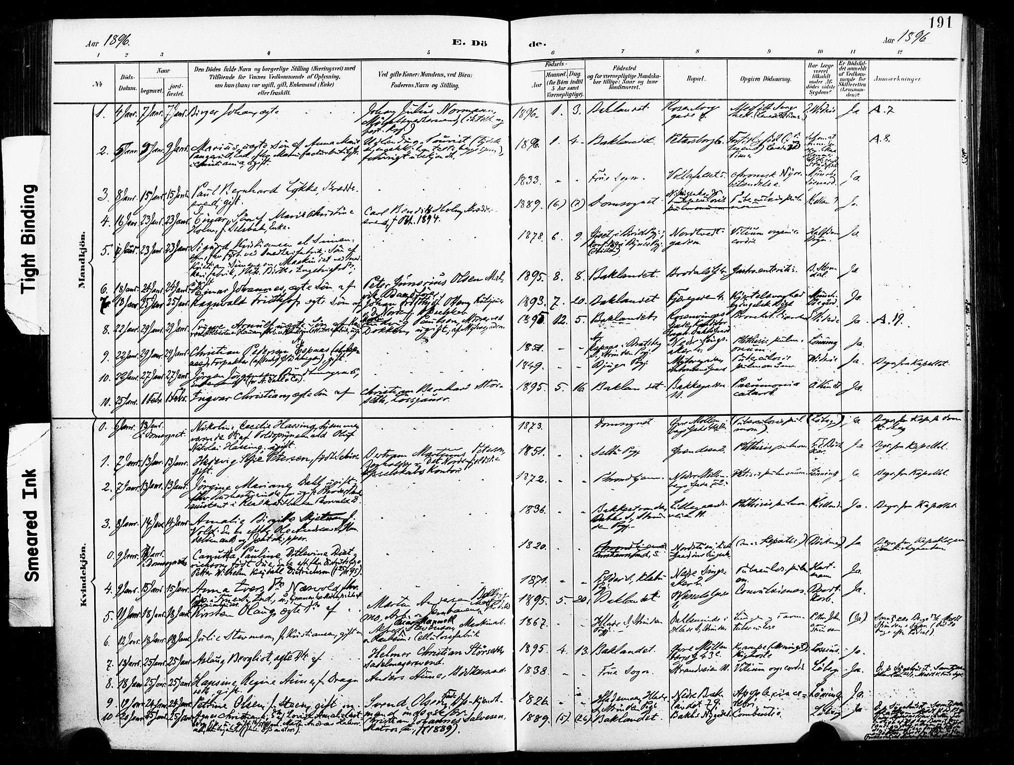 SAT, Ministerialprotokoller, klokkerbøker og fødselsregistre - Sør-Trøndelag, 604/L0198: Ministerialbok nr. 604A19, 1893-1900, s. 191