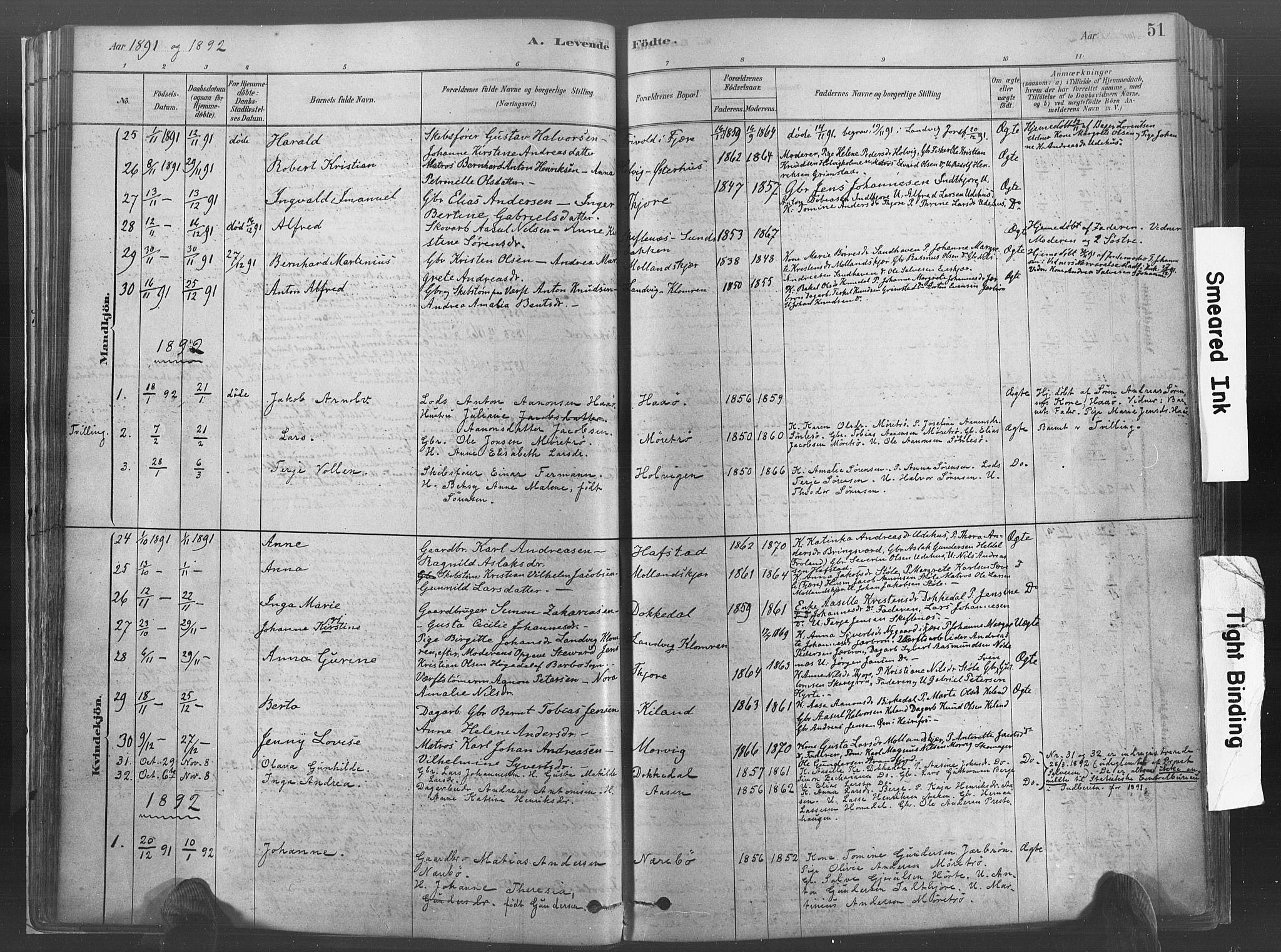 SAK, Hommedal sokneprestkontor, F/Fa/Fab/L0006: Ministerialbok nr. A 6, 1878-1897, s. 51