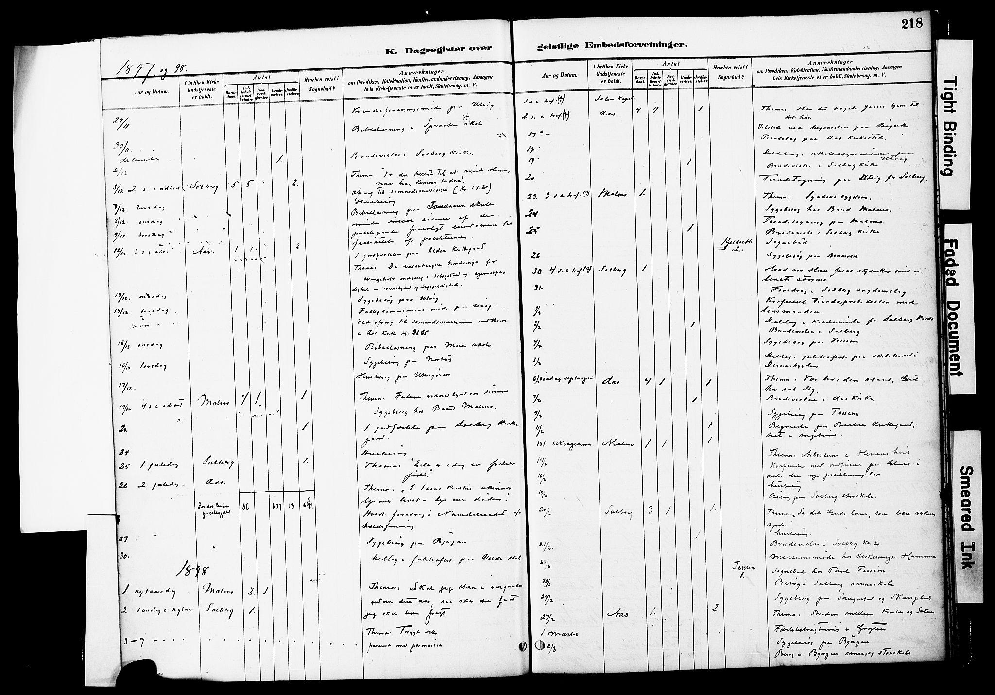 SAT, Ministerialprotokoller, klokkerbøker og fødselsregistre - Nord-Trøndelag, 741/L0396: Ministerialbok nr. 741A10, 1889-1901, s. 218