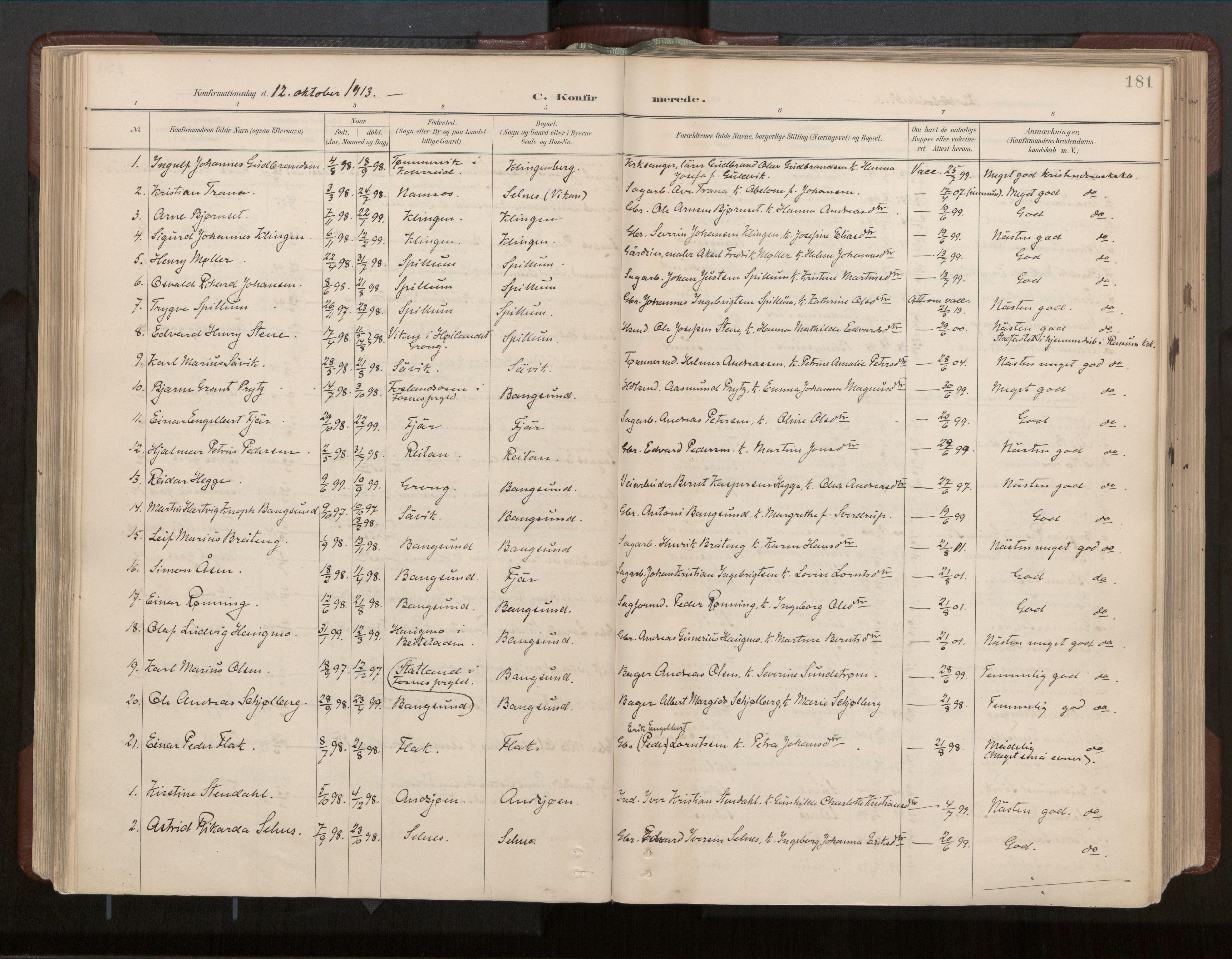 SAT, Ministerialprotokoller, klokkerbøker og fødselsregistre - Nord-Trøndelag, 770/L0589: Ministerialbok nr. 770A03, 1887-1929, s. 181
