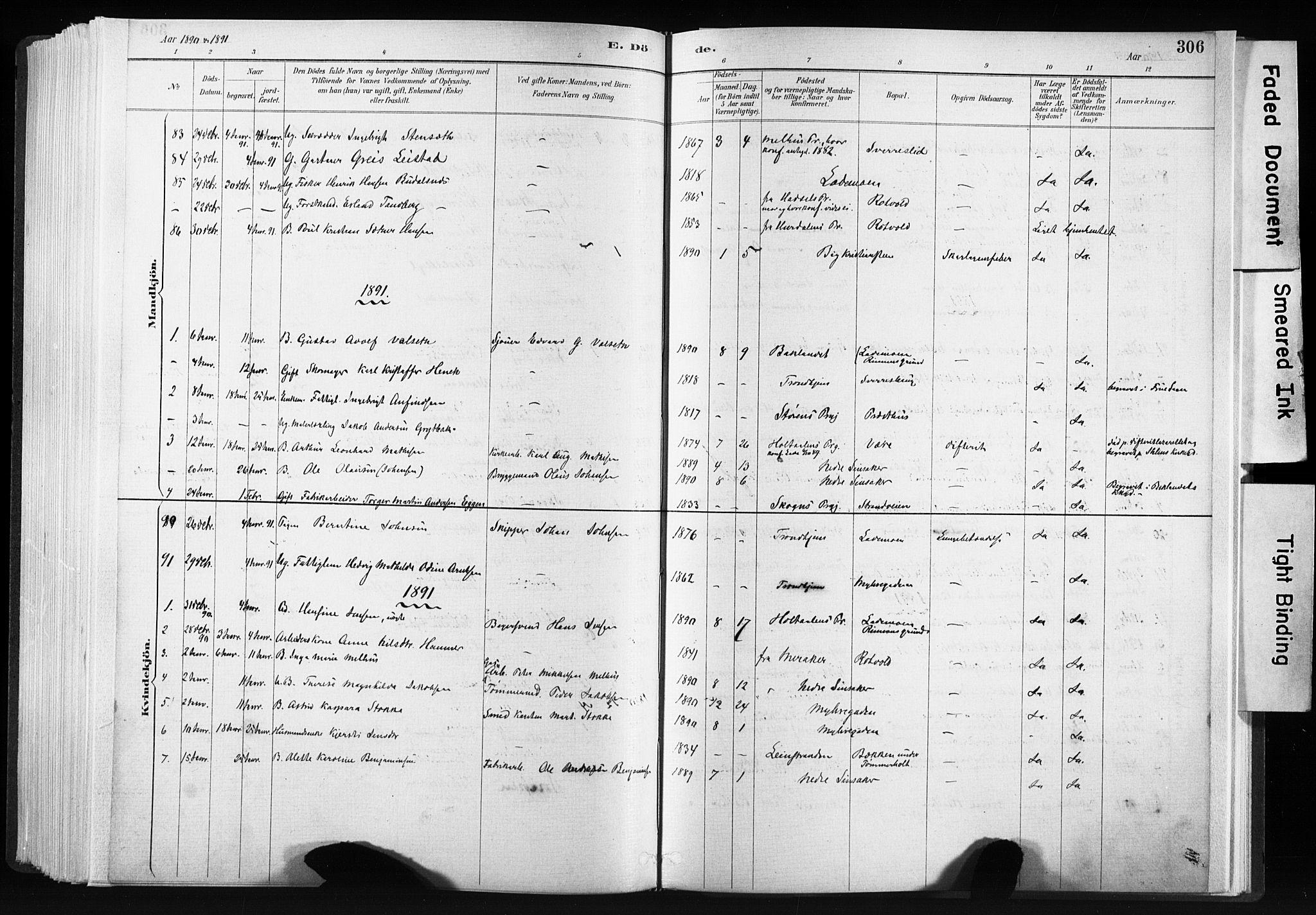 SAT, Ministerialprotokoller, klokkerbøker og fødselsregistre - Sør-Trøndelag, 606/L0300: Ministerialbok nr. 606A15, 1886-1893, s. 306