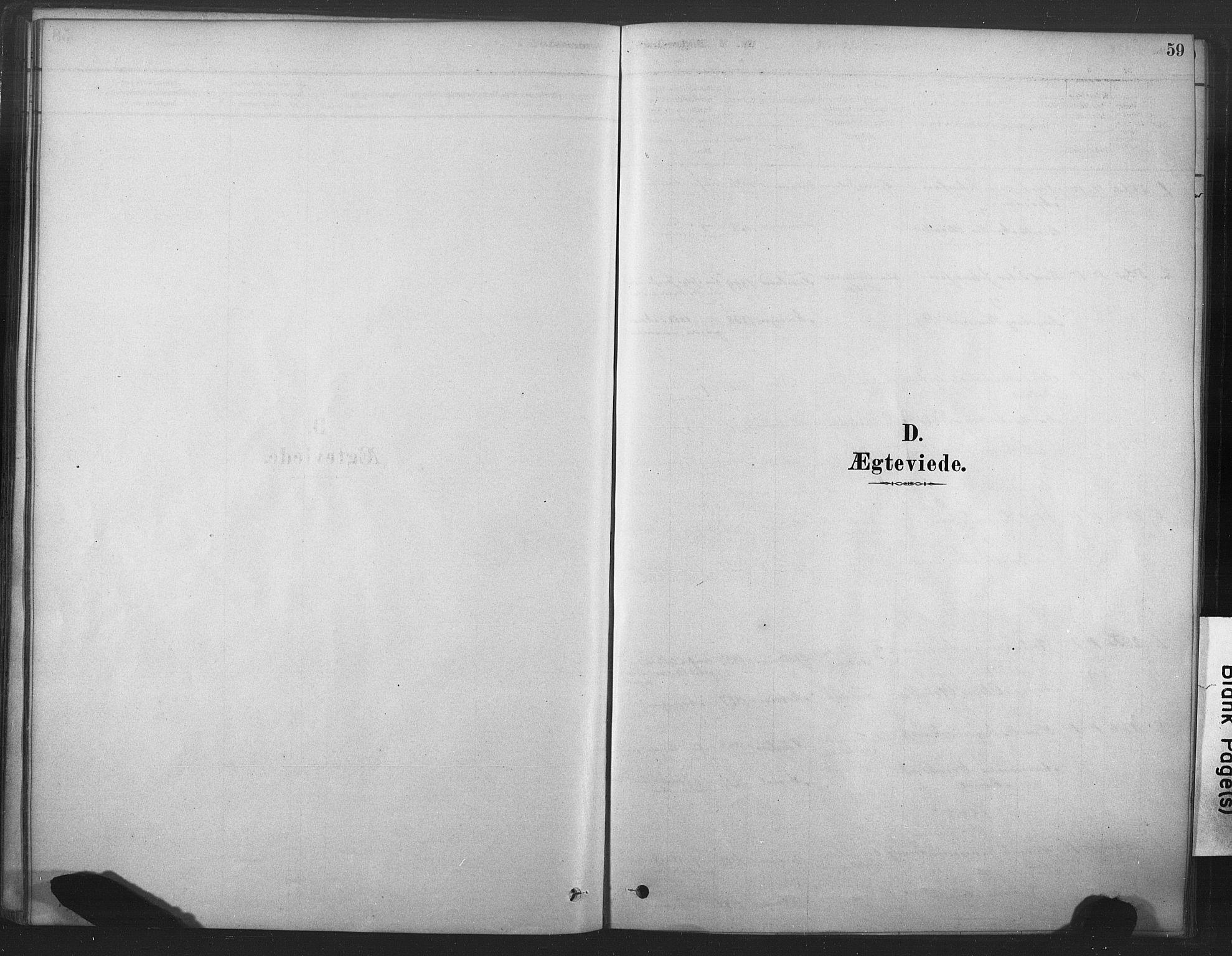 SAT, Ministerialprotokoller, klokkerbøker og fødselsregistre - Nord-Trøndelag, 719/L0178: Ministerialbok nr. 719A01, 1878-1900, s. 59