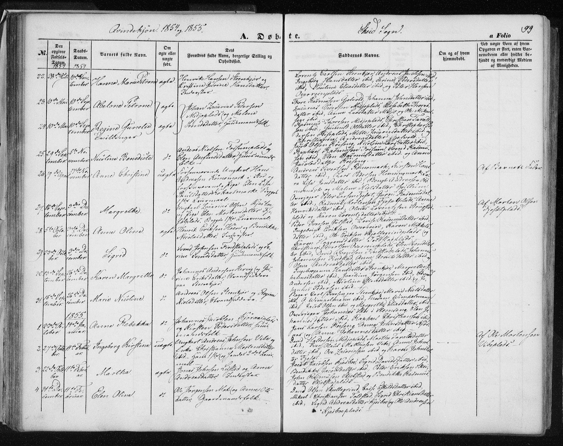 SAT, Ministerialprotokoller, klokkerbøker og fødselsregistre - Nord-Trøndelag, 735/L0342: Ministerialbok nr. 735A07 /2, 1849-1862, s. 99